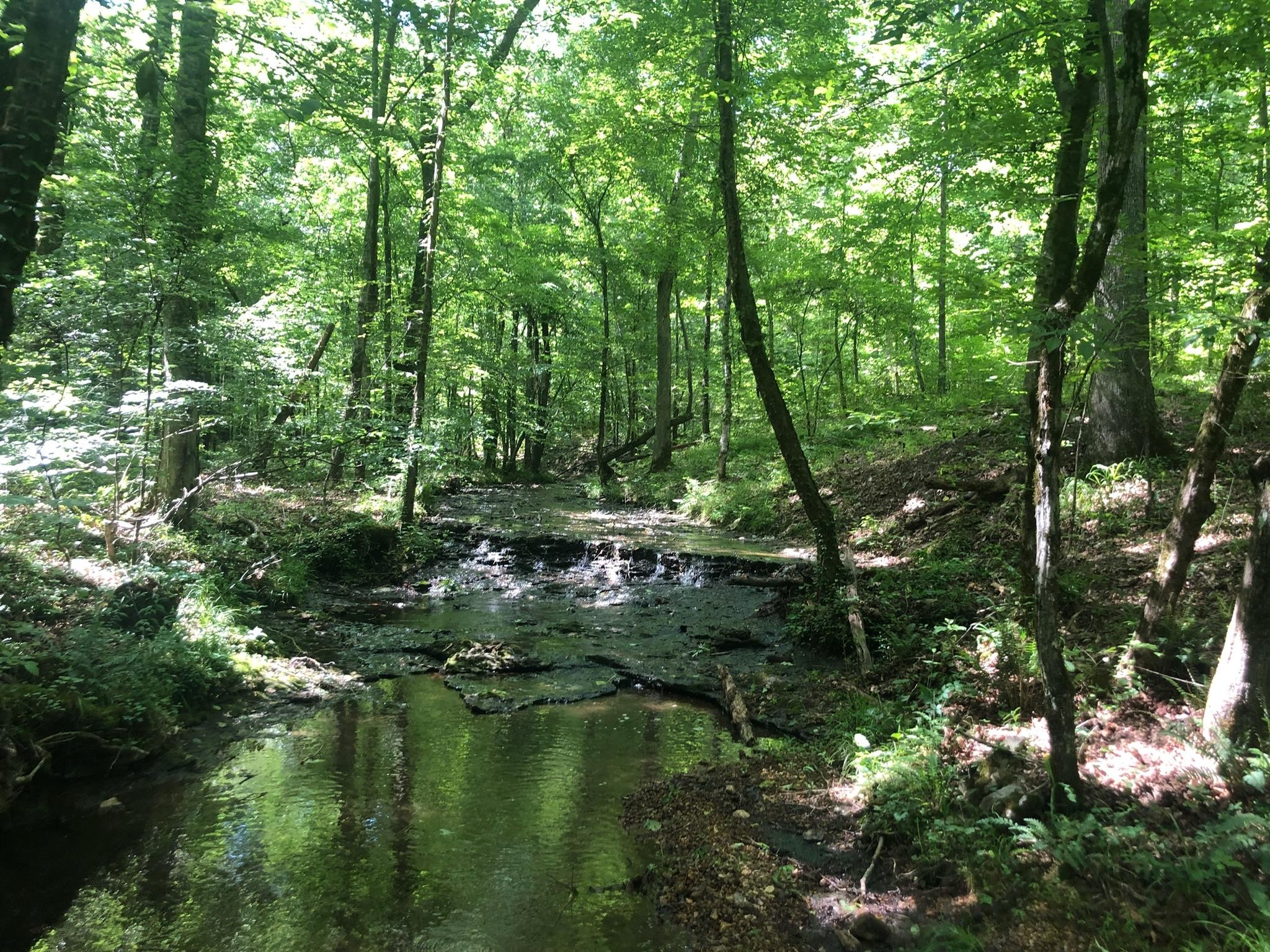 437 S Ore Rd S Property Photo - Westpoint, TN real estate listing