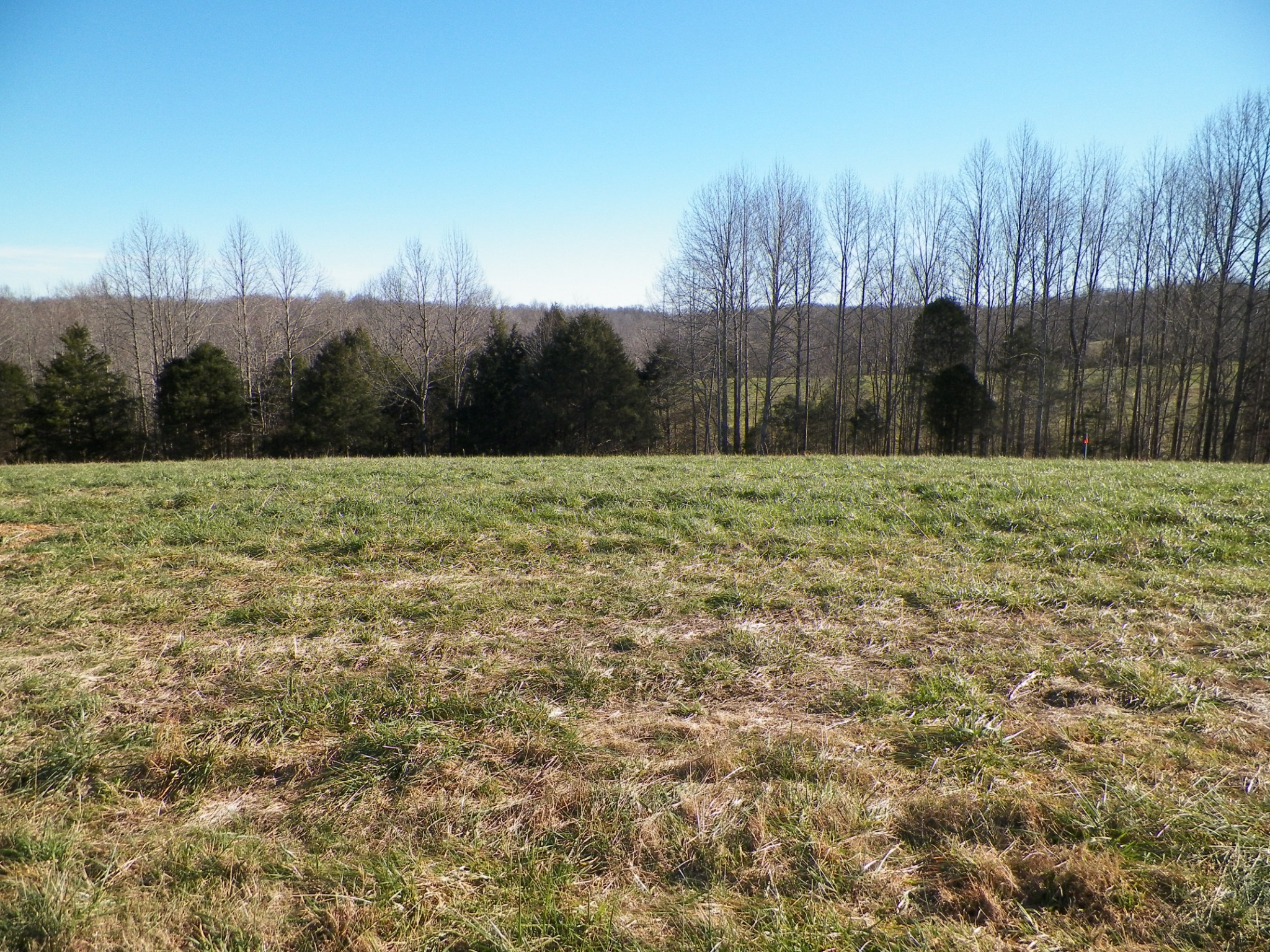 8 Oak Grove Road Property Photo - Red Boiling Springs, TN real estate listing