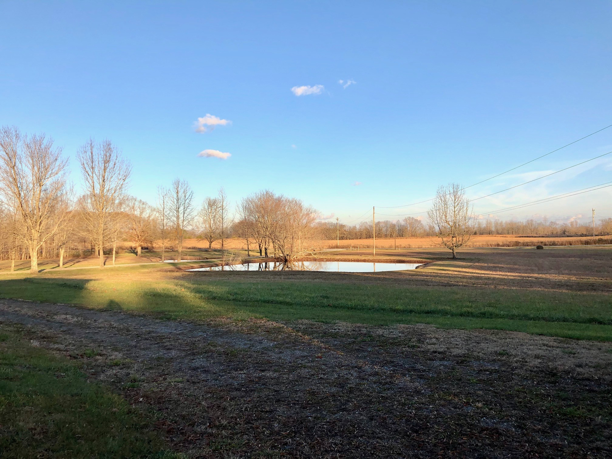 4188 Summertown Hwy Property Photo - Summertown, TN real estate listing