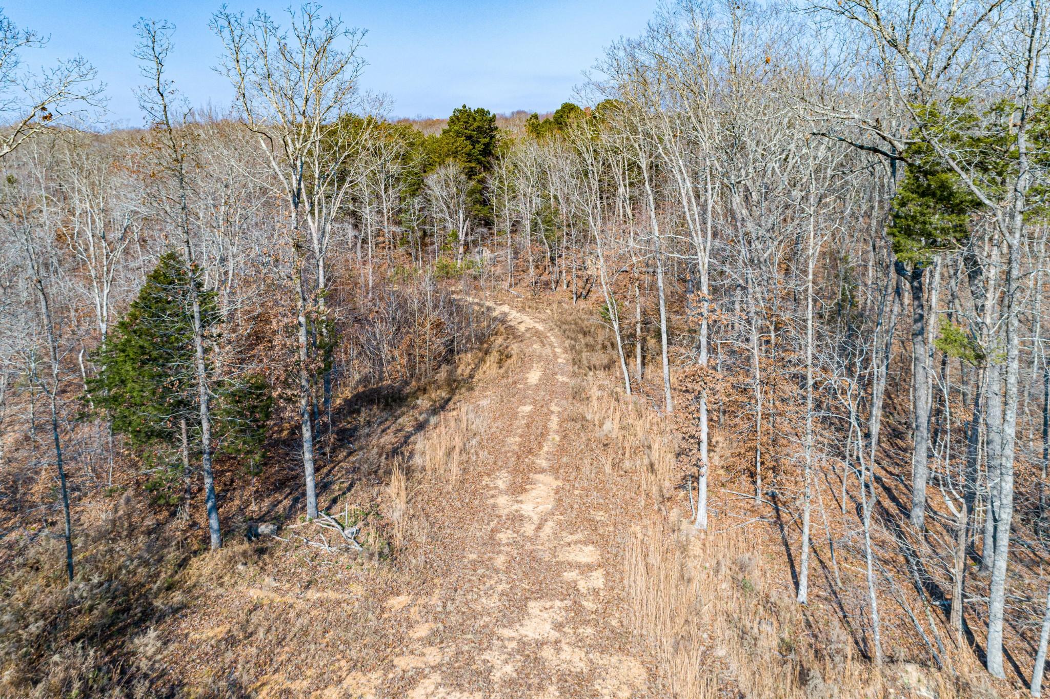 0 Joe Yarbro Rd Property Photo - Decaturville, TN real estate listing