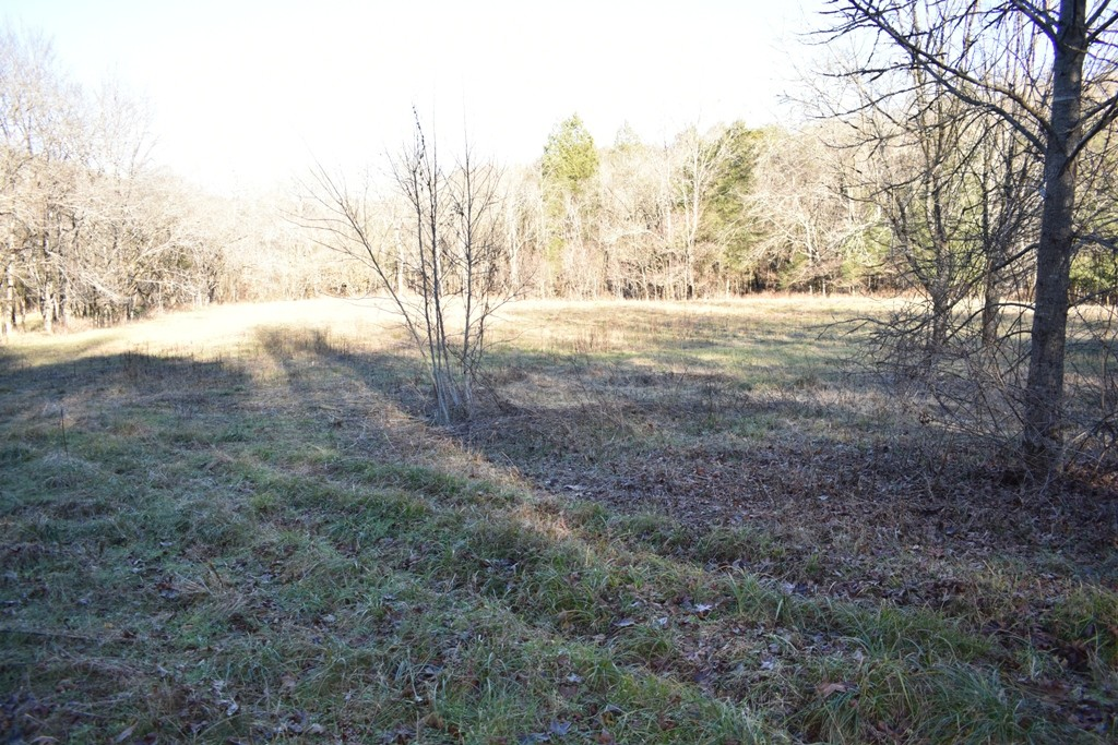 0 Grisham Hollow Ln Property Photo - Elmwood, TN real estate listing