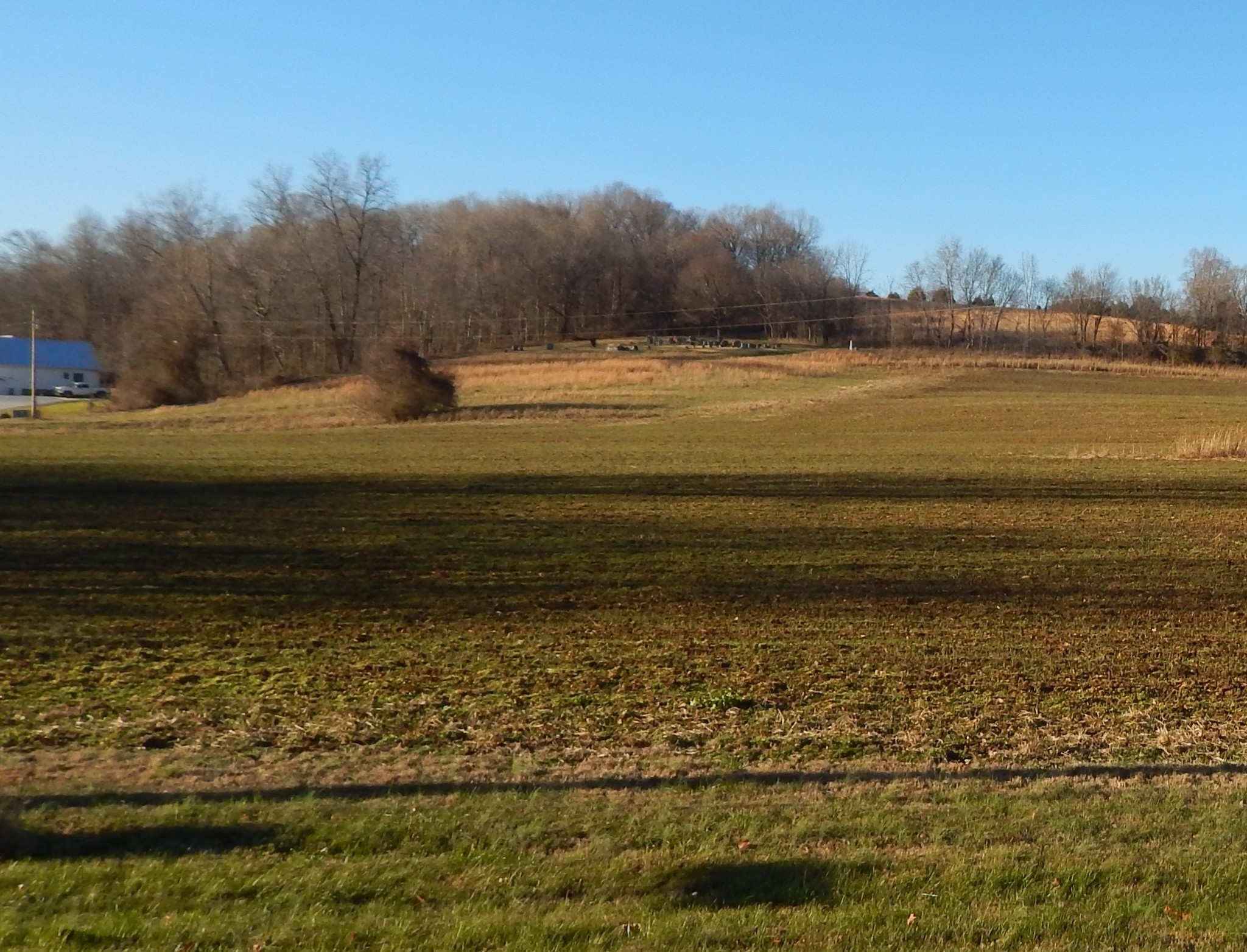 0 Little Bartons Creek Road Property Photo - Cumberland Furnace, TN real estate listing