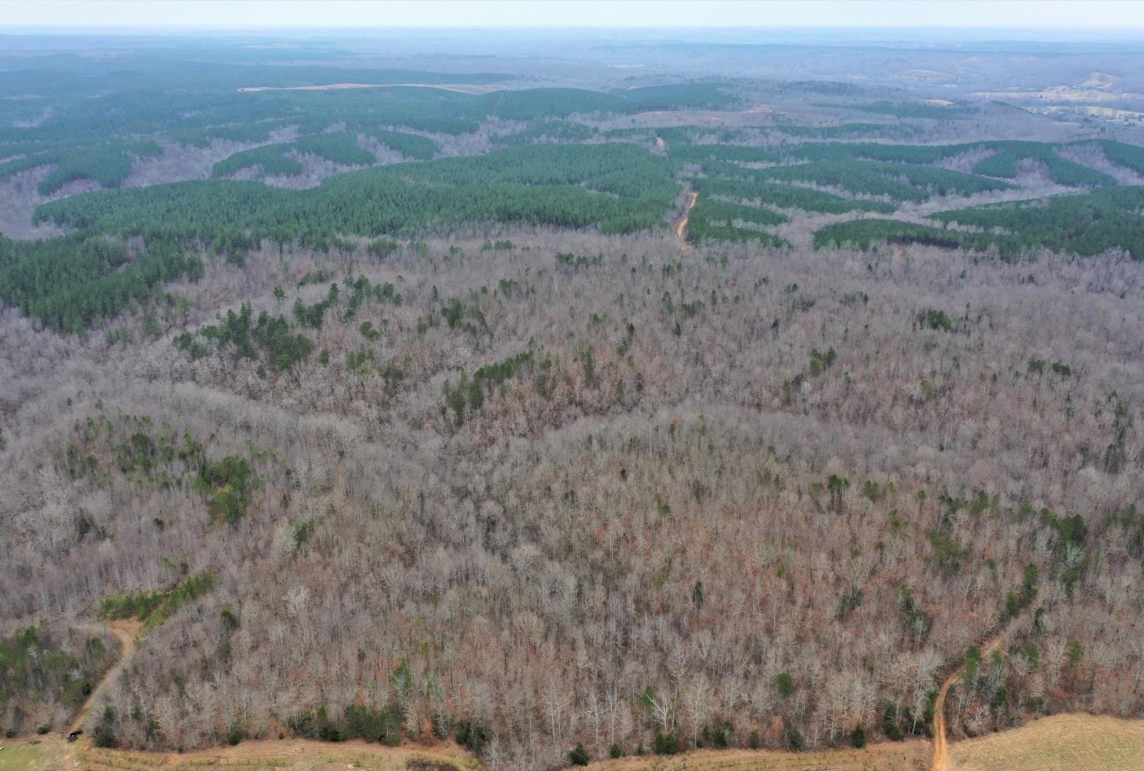 0 Hwy. 13 North Property Photo - Waynesboro, TN real estate listing