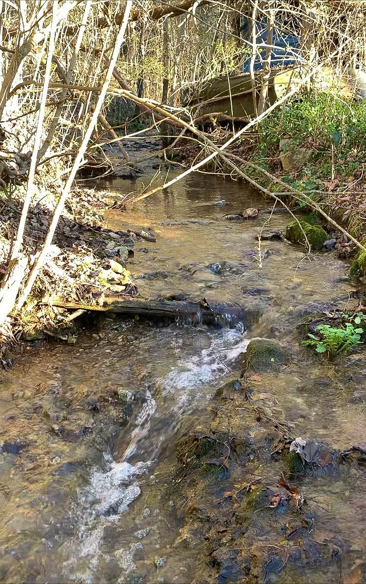 1190 Flat Creek Hwy Property Photo - Lynchburg, TN real estate listing