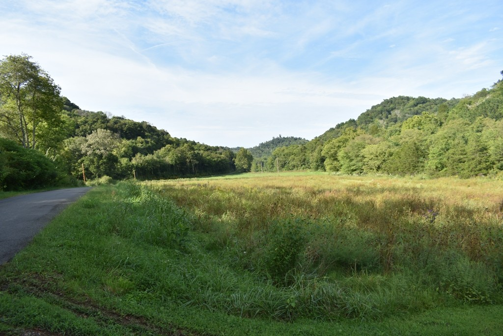 0 E Fork Rd Property Photo - Whitleyville, TN real estate listing