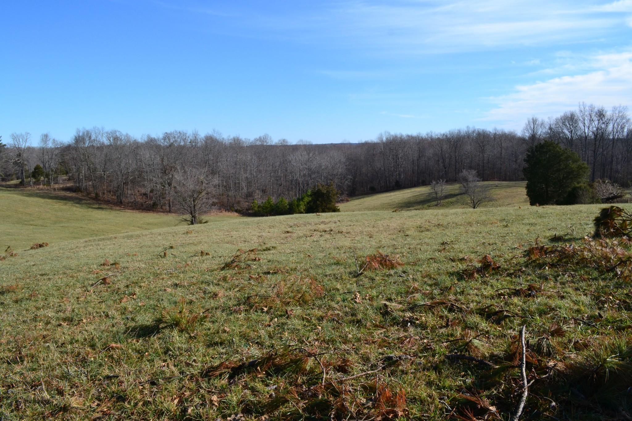 2 Barber Hwy Property Photo - Cumberland City, TN real estate listing