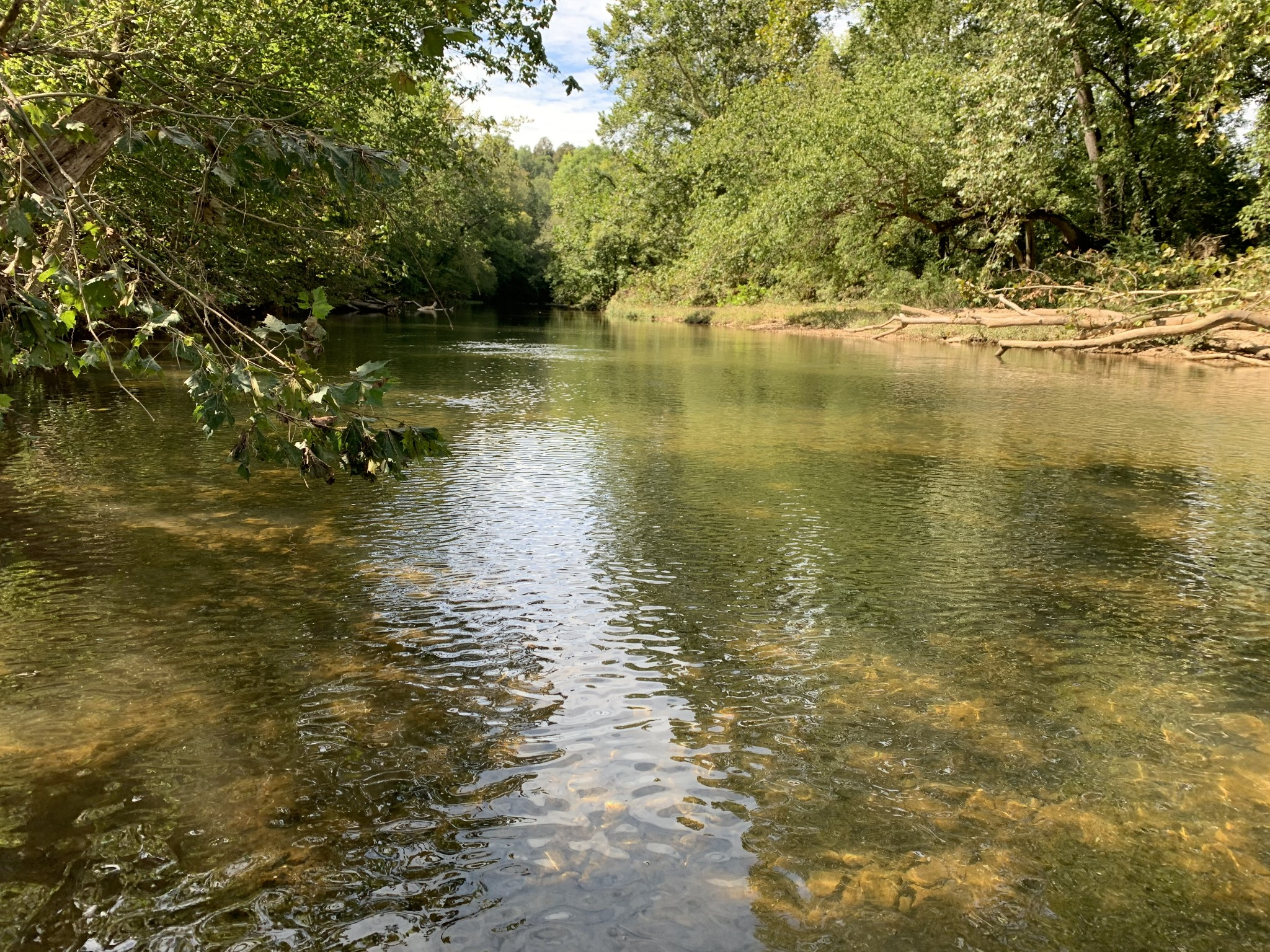 1 Long Branch Rd Property Photo - Loretto, TN real estate listing