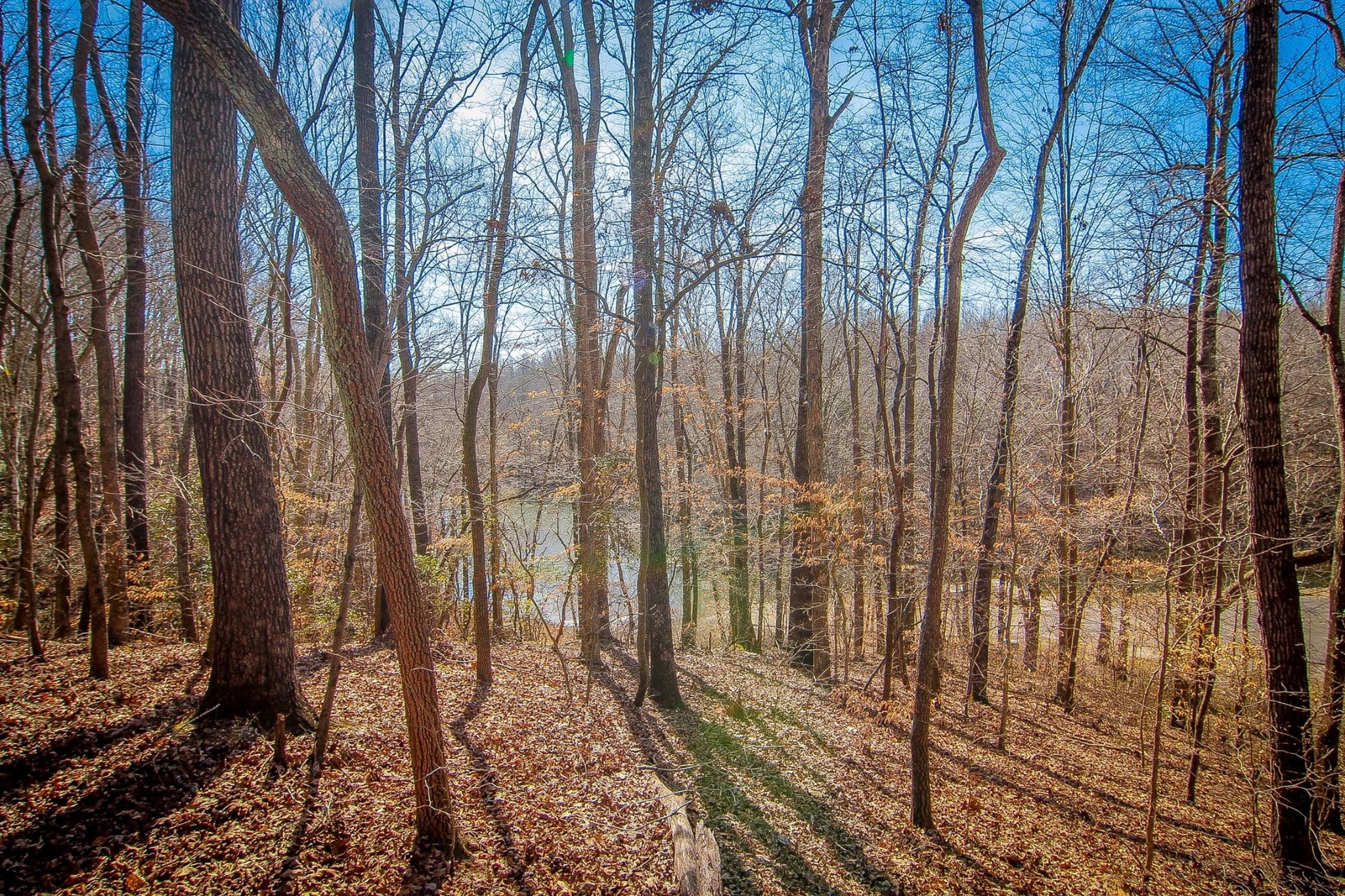 0 Pleasant Grv Rd Property Photo - Estill Springs, TN real estate listing