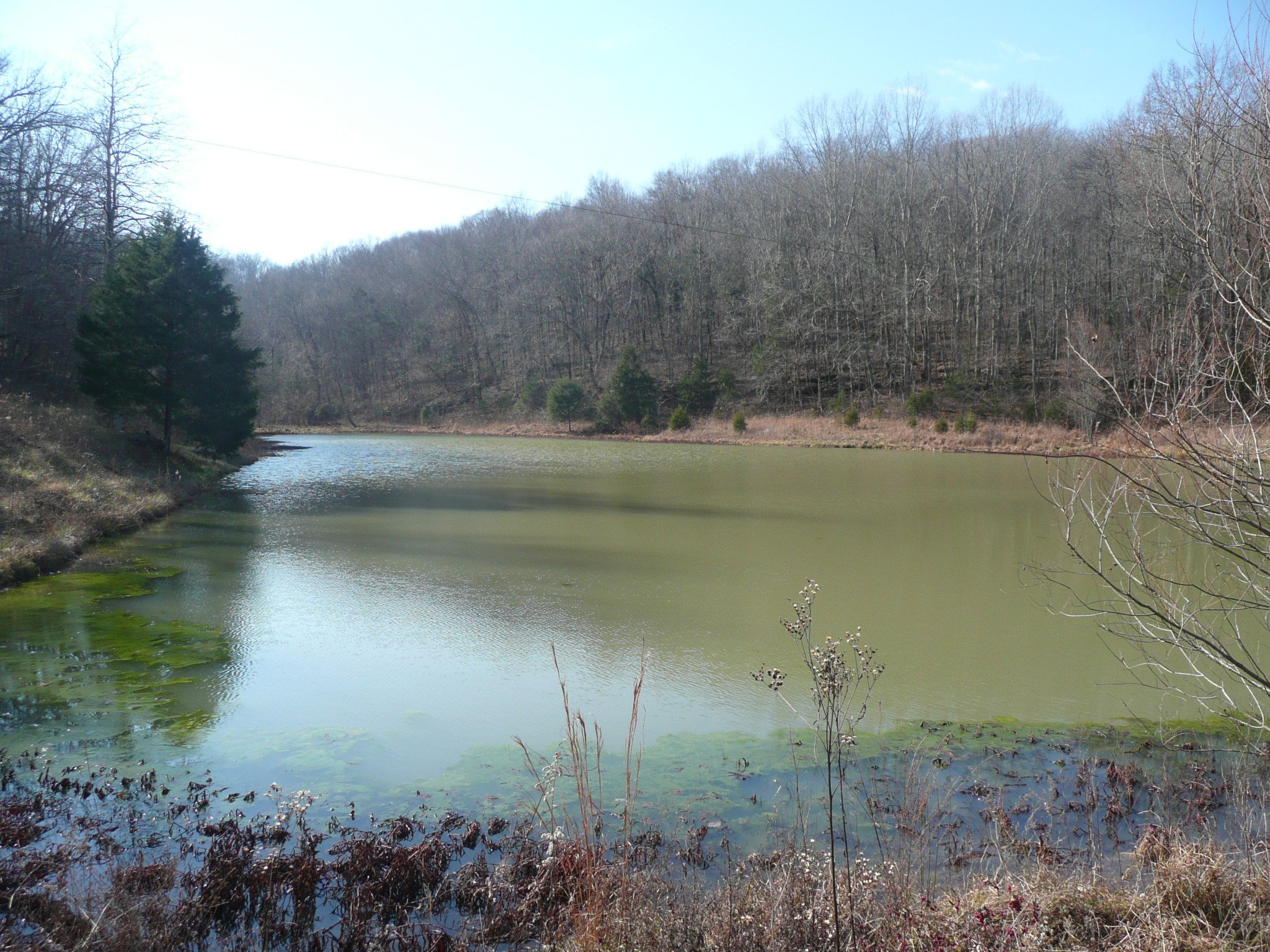 798 Red Tuttle Rd Property Photo - Bethpage, TN real estate listing