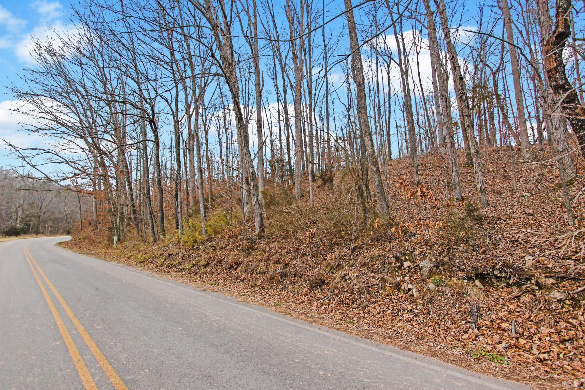 1 Baylor Brown Rd Property Photo - Erin, TN real estate listing