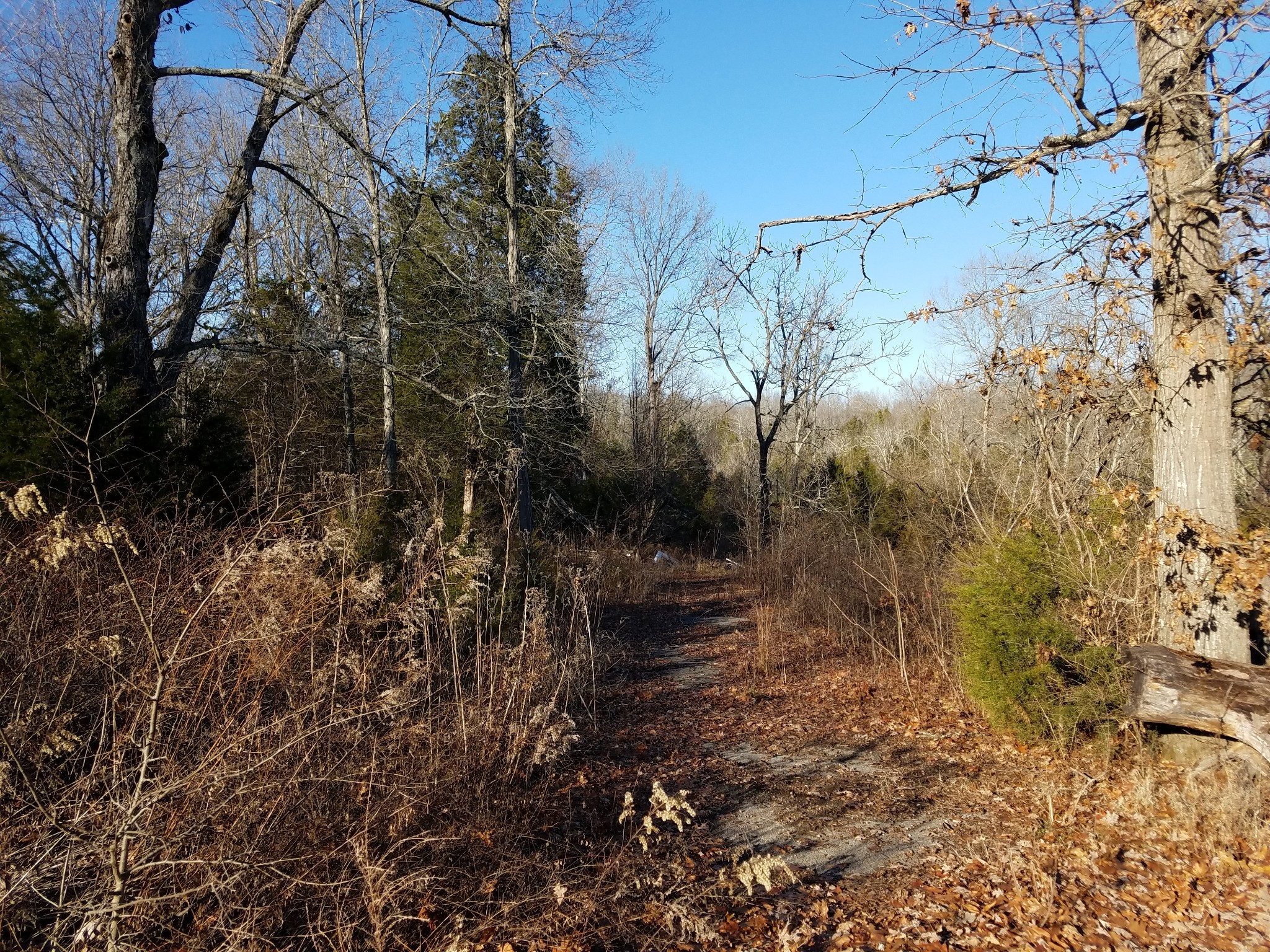 5078 Joe Peay Rd Property Photo - Spring Hill, TN real estate listing