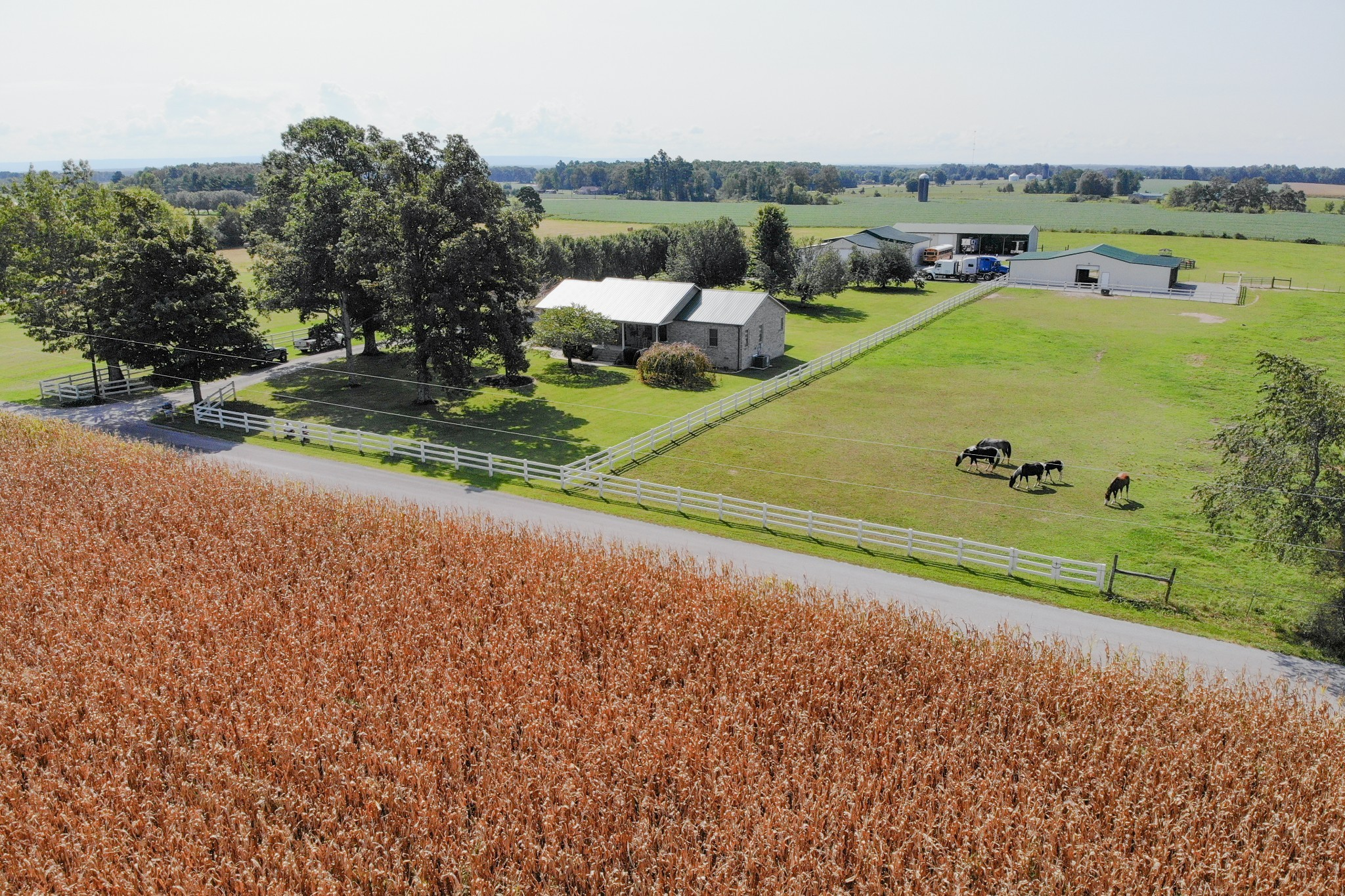 223 Smith Rd Property Photo - Bradyville, TN real estate listing