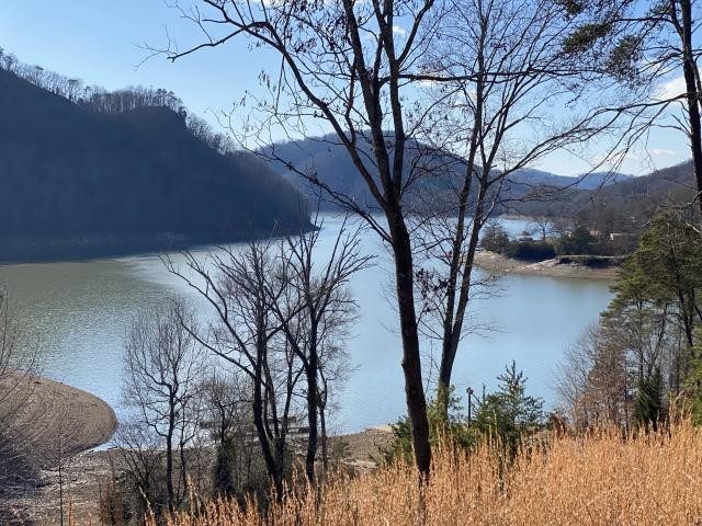 0 Walnut Bend Dr Property Photo - Whitesburg, TN real estate listing