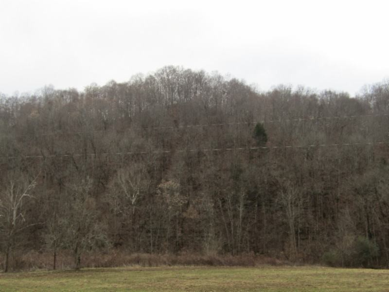82 .90ac Knob Creek Road Property Photo - Celina, TN real estate listing