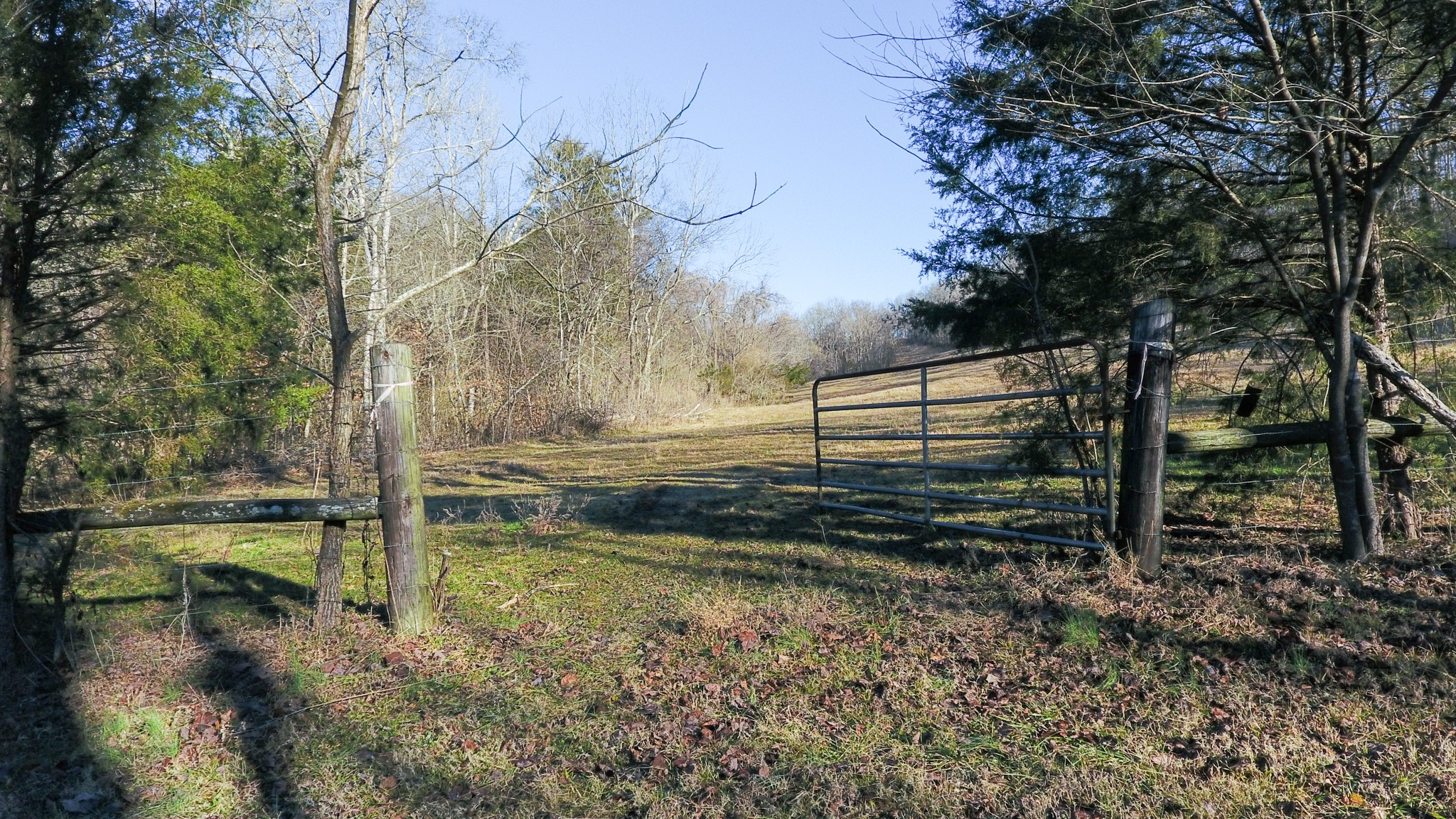 0 Pierce Hollow Rd Property Photo - Belvidere, TN real estate listing
