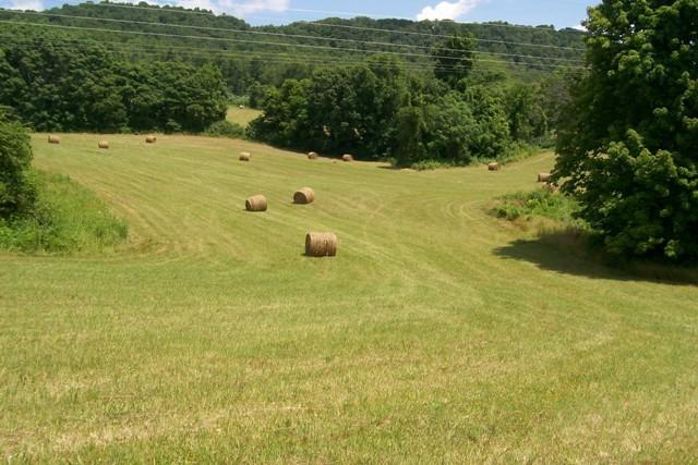 0 Webbs Camp Rd Property Photo