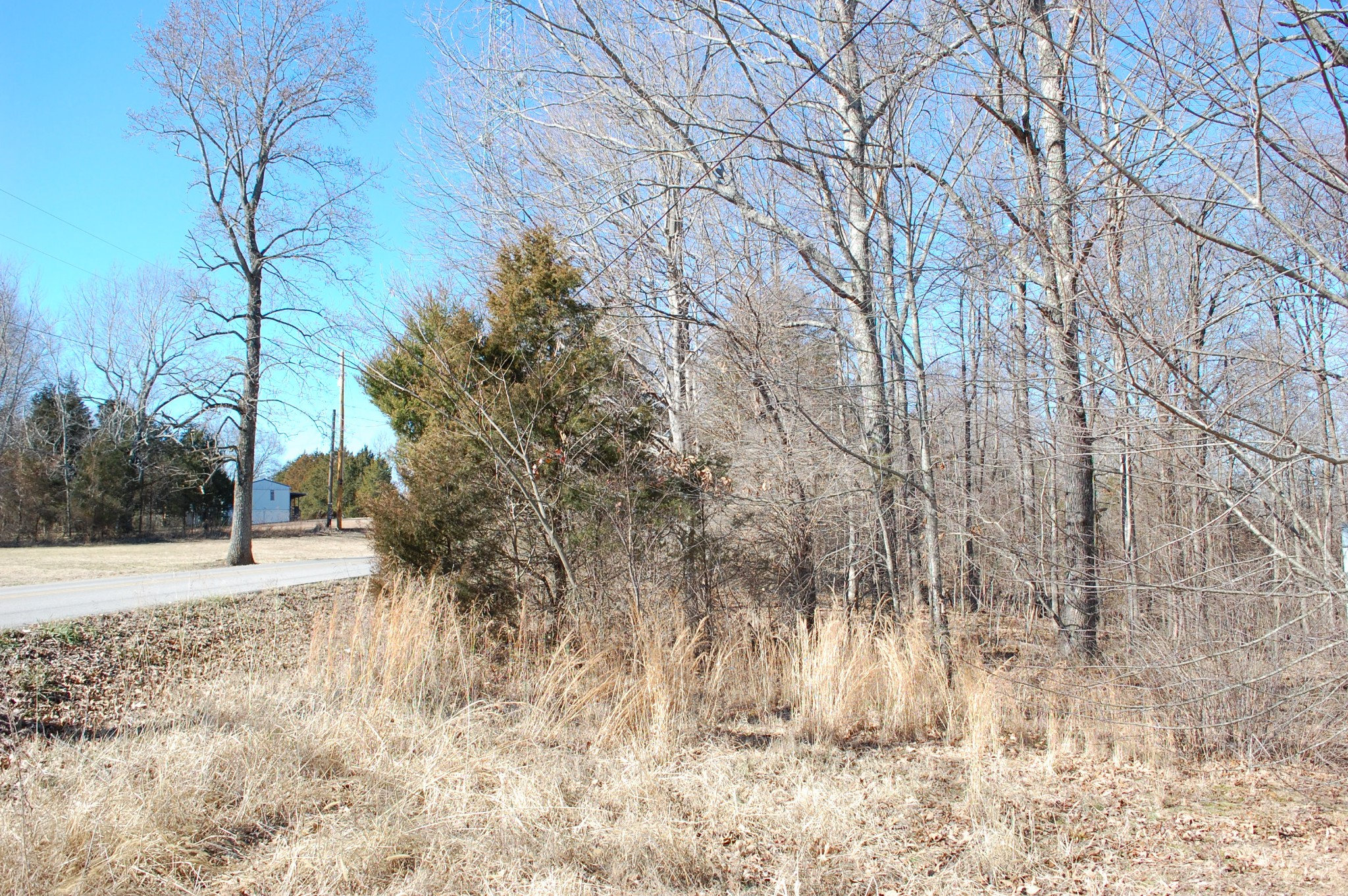 4447 Baggett Hollow Rd Property Photo - Cunningham, TN real estate listing