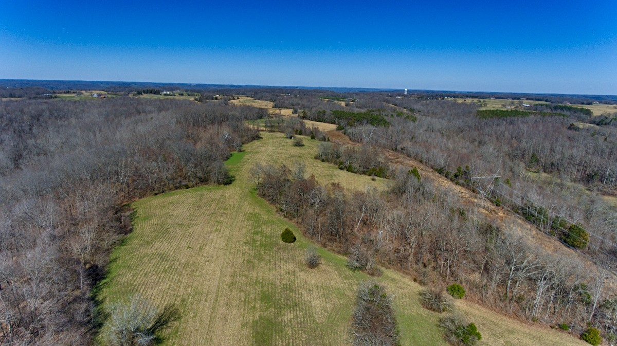 0 McLemore Road Property Photo - Ardmore, TN real estate listing