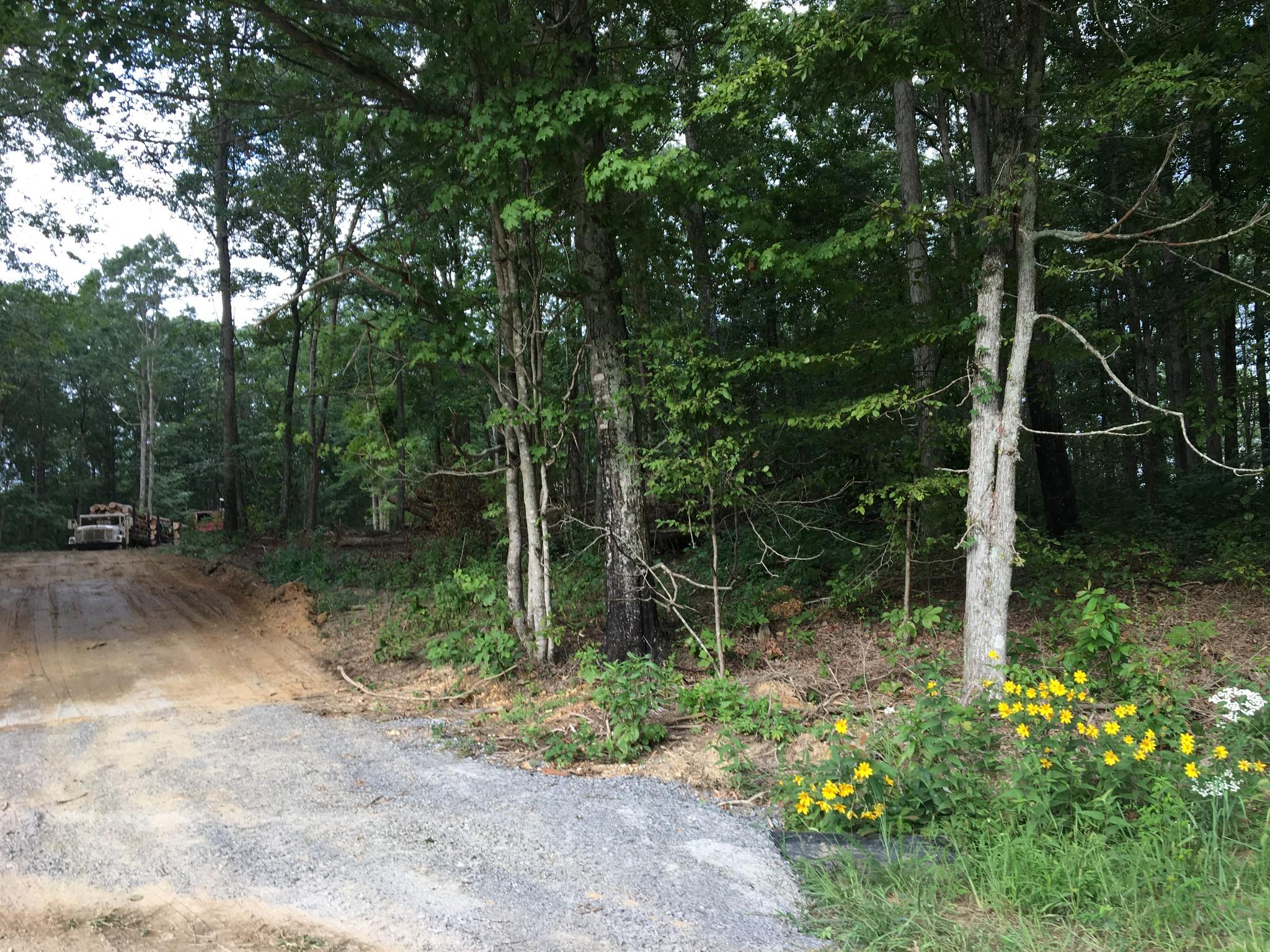 0 Deep Cut Road Property Photo - Erin, TN real estate listing