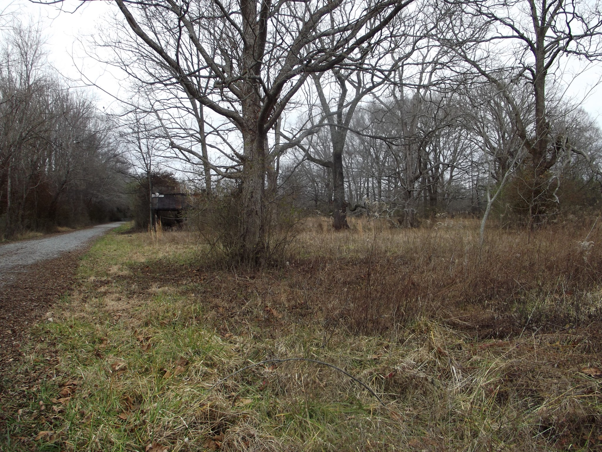 0 Railroad Rd Property Photo - Elora, TN real estate listing