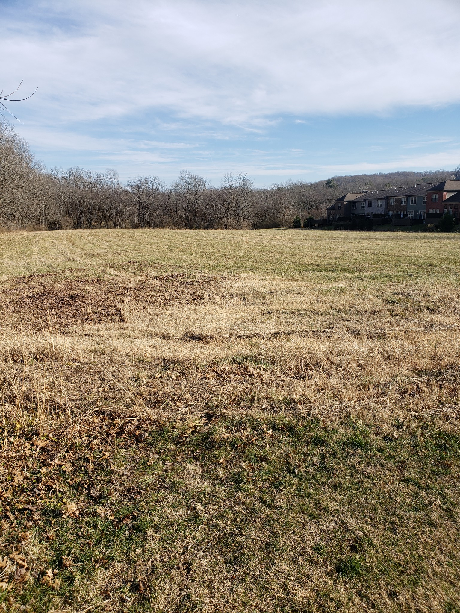 5.08 Acres Real Estate Listings Main Image