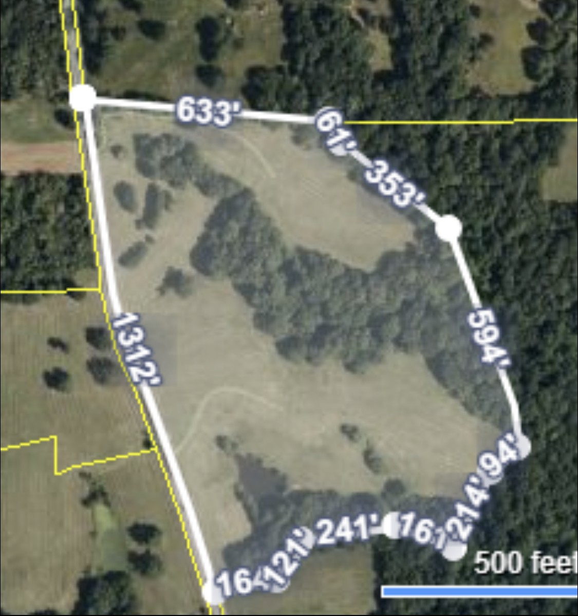 0 Point Pleasant Rd Property Photo - Buchanan, TN real estate listing