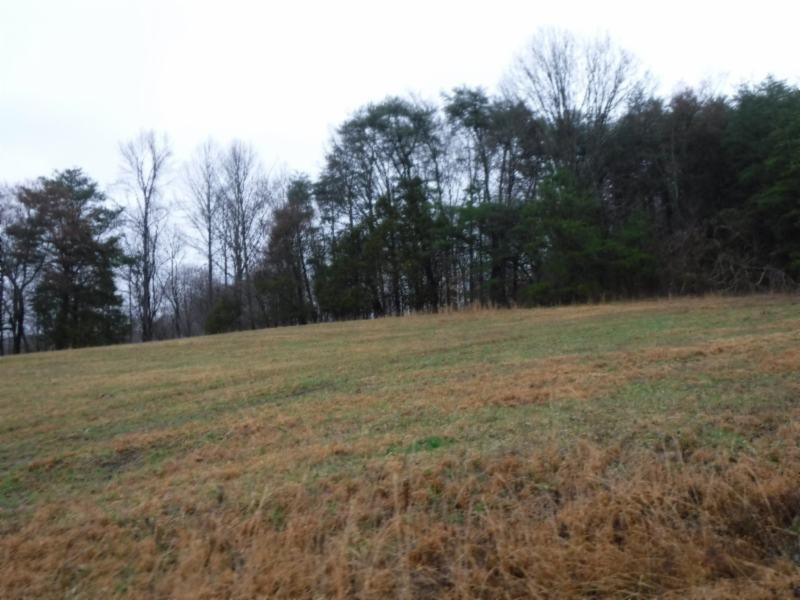 1 Arrowhead Rd Property Photo - Moss, TN real estate listing