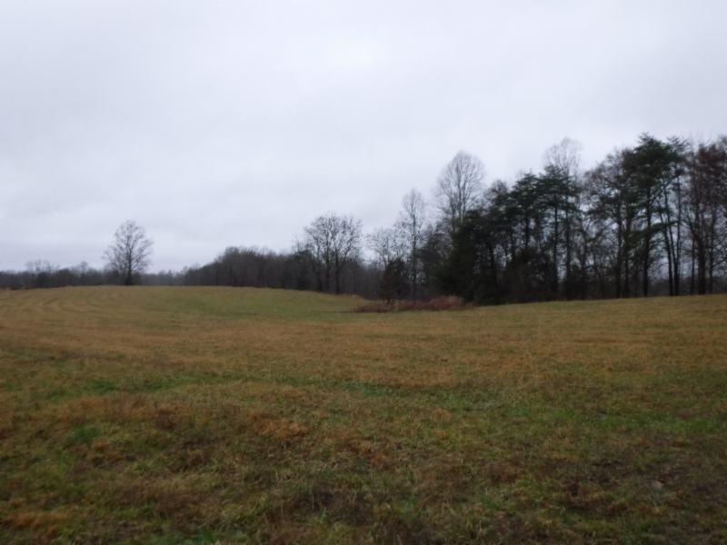 4 Arrowhead Rd Property Photo - Moss, TN real estate listing
