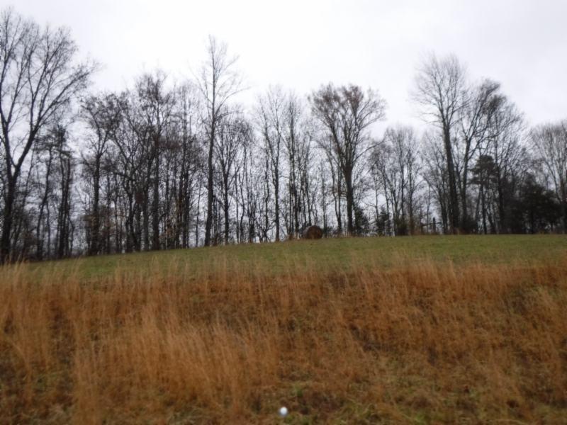 7 Arrowhead Rd Property Photo - Moss, TN real estate listing