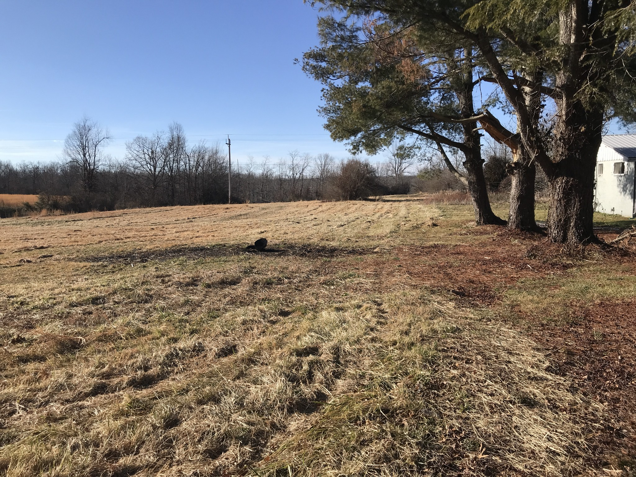 13895 Highway 127 N Property Photo - Crossville, TN real estate listing