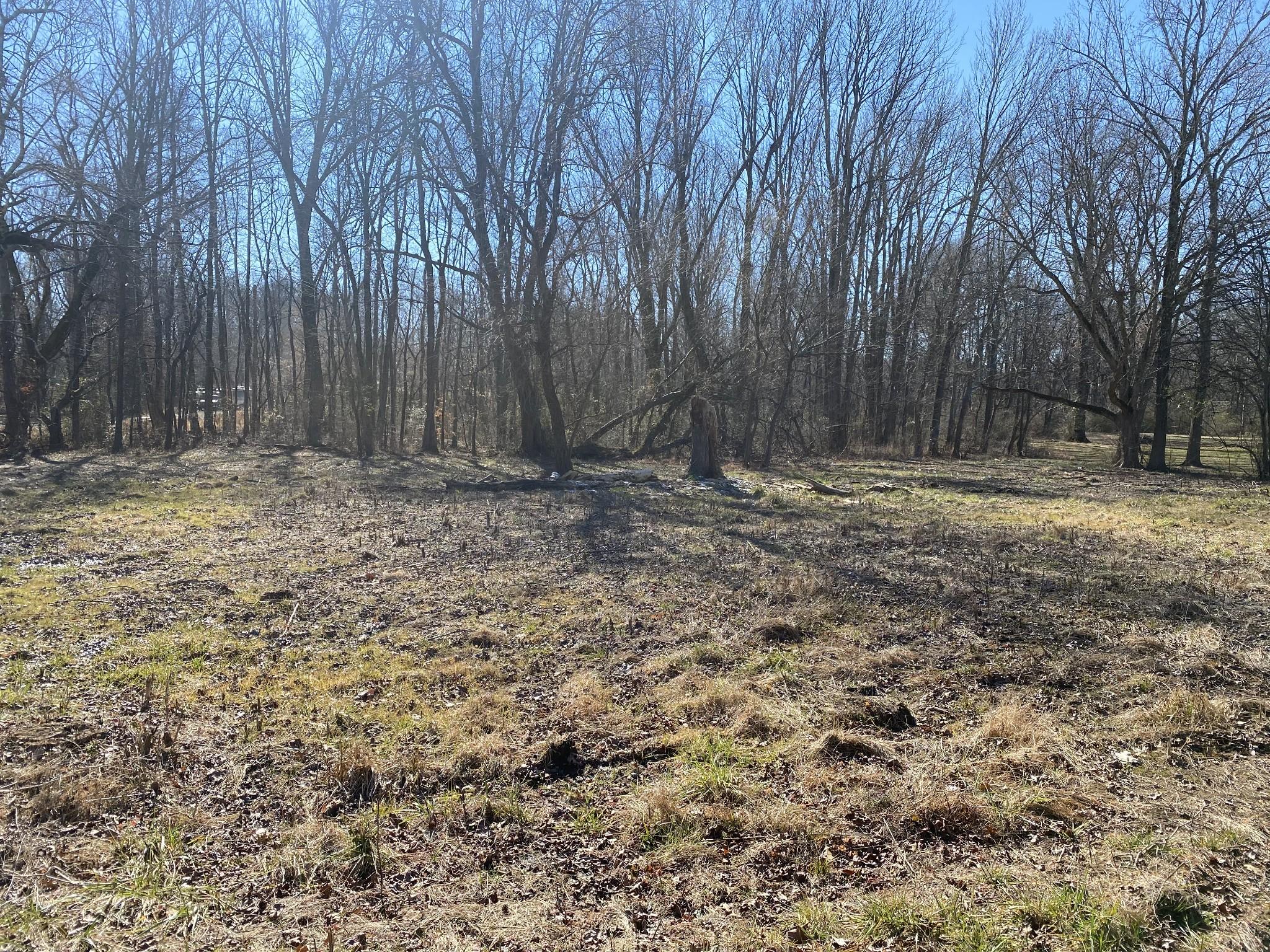 3239 Mud Cat Rd Property Photo - Cedar Hill, TN real estate listing