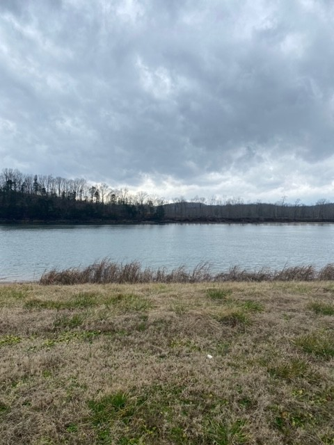 1481 Hardin Bottom Riv Rd Property Photo - Clifton, TN real estate listing