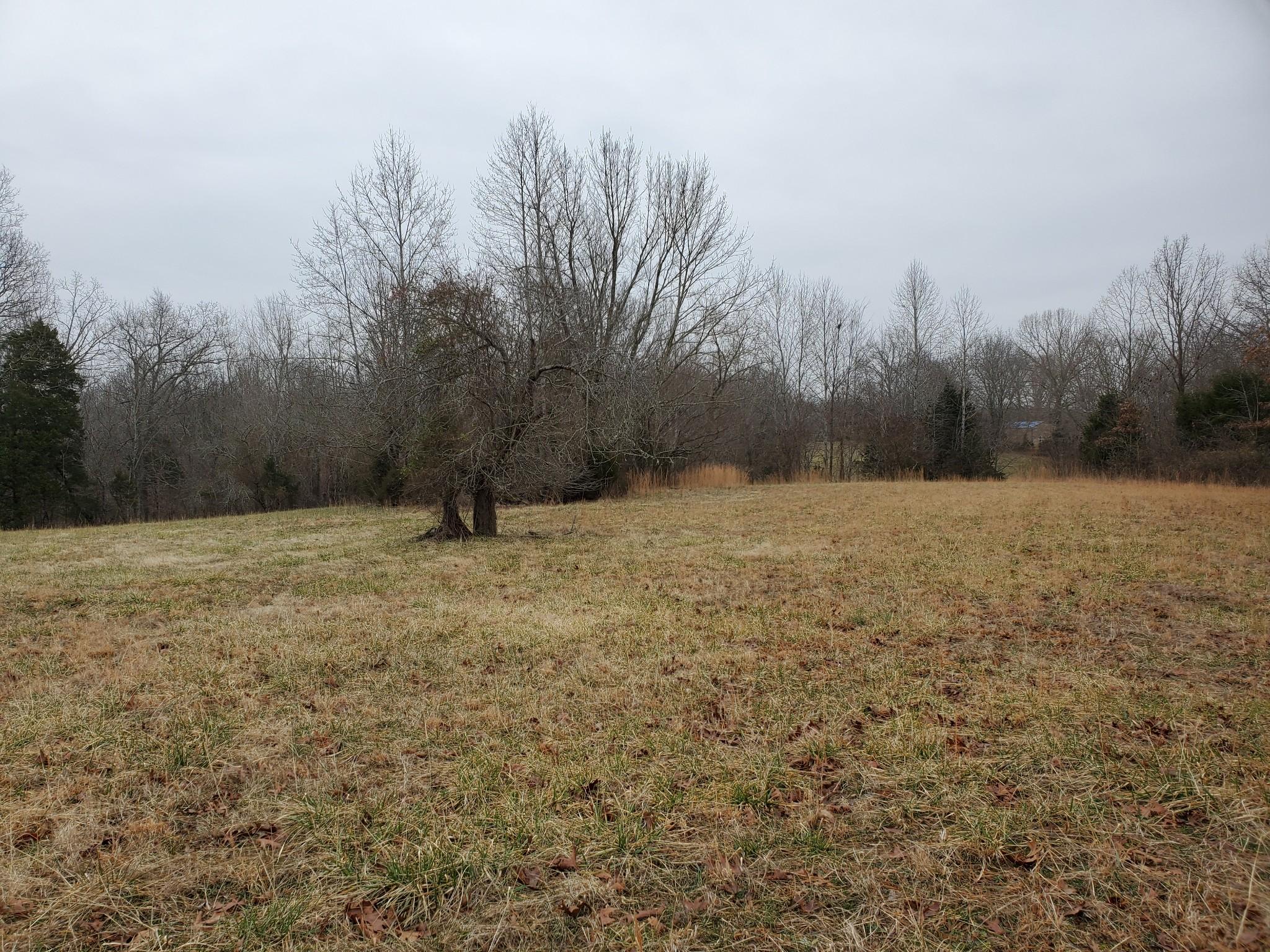 4531 Akin Rd Property Photo - Cunningham, TN real estate listing
