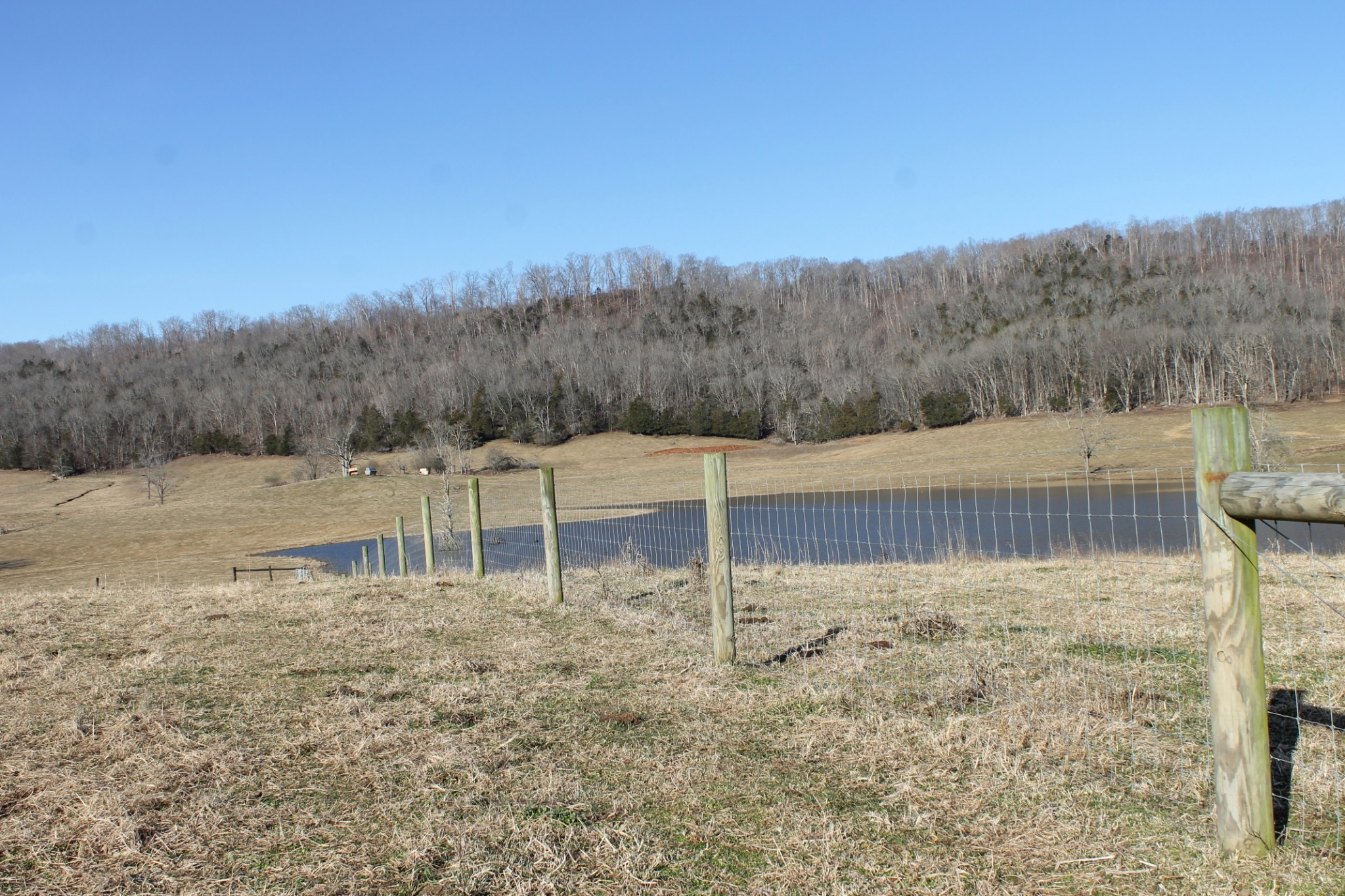 0 Judge Austin Rd Property Photo - Sparta, TN real estate listing