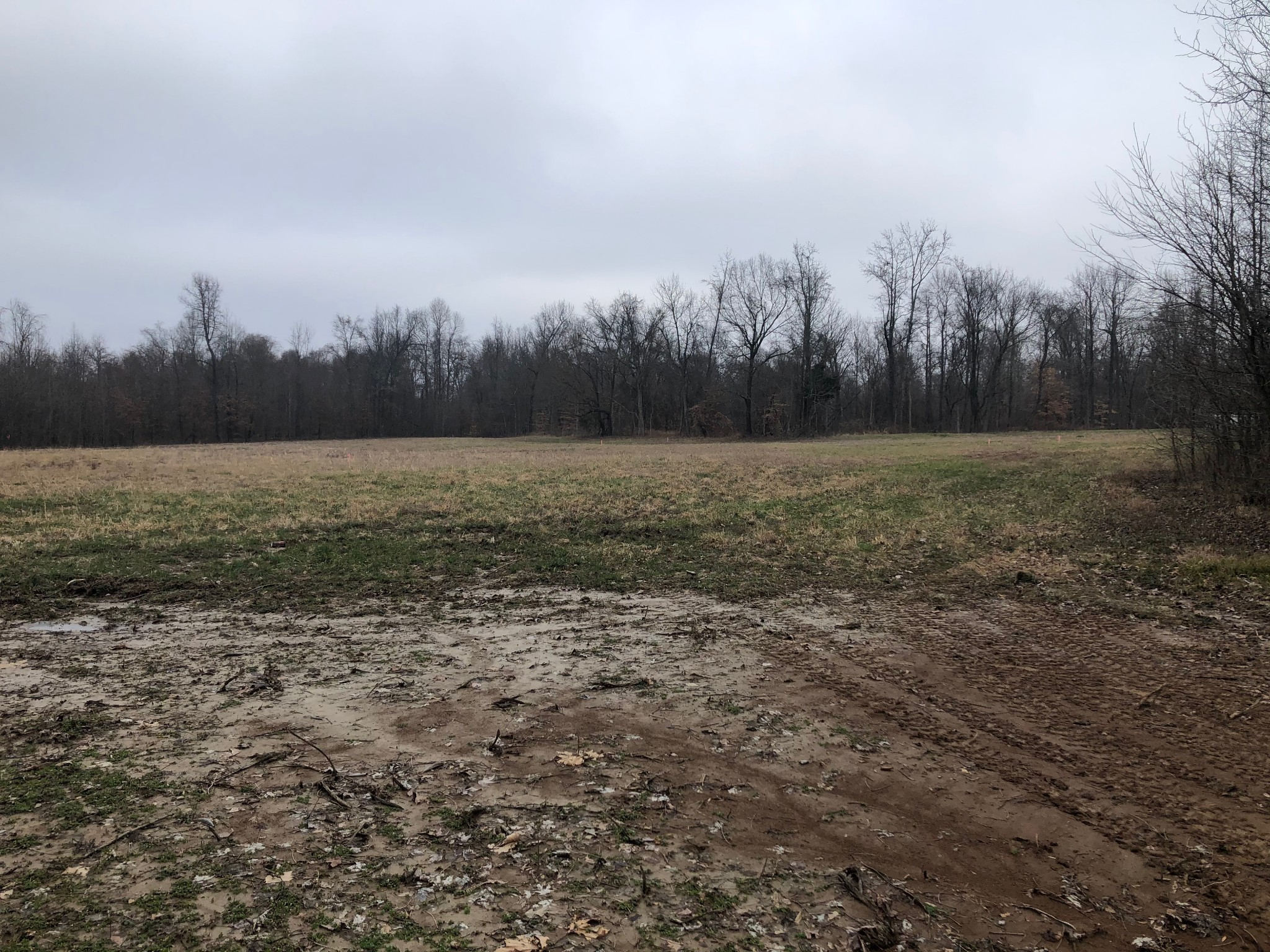 2157 Central Curv Rd Property Photo - Ripley, TN real estate listing