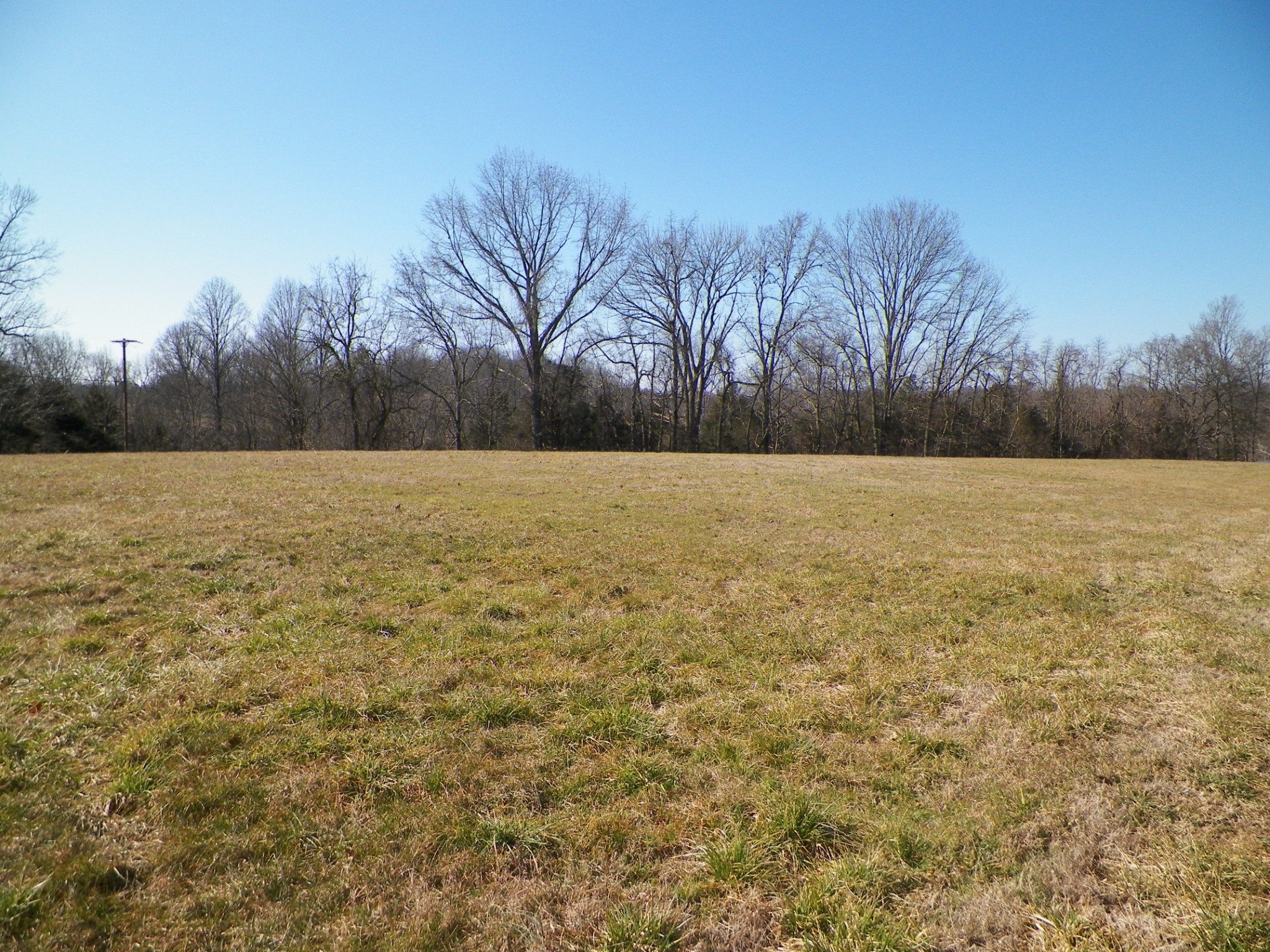 190 Akersville Rd Property Photo - Scottsville, KY real estate listing