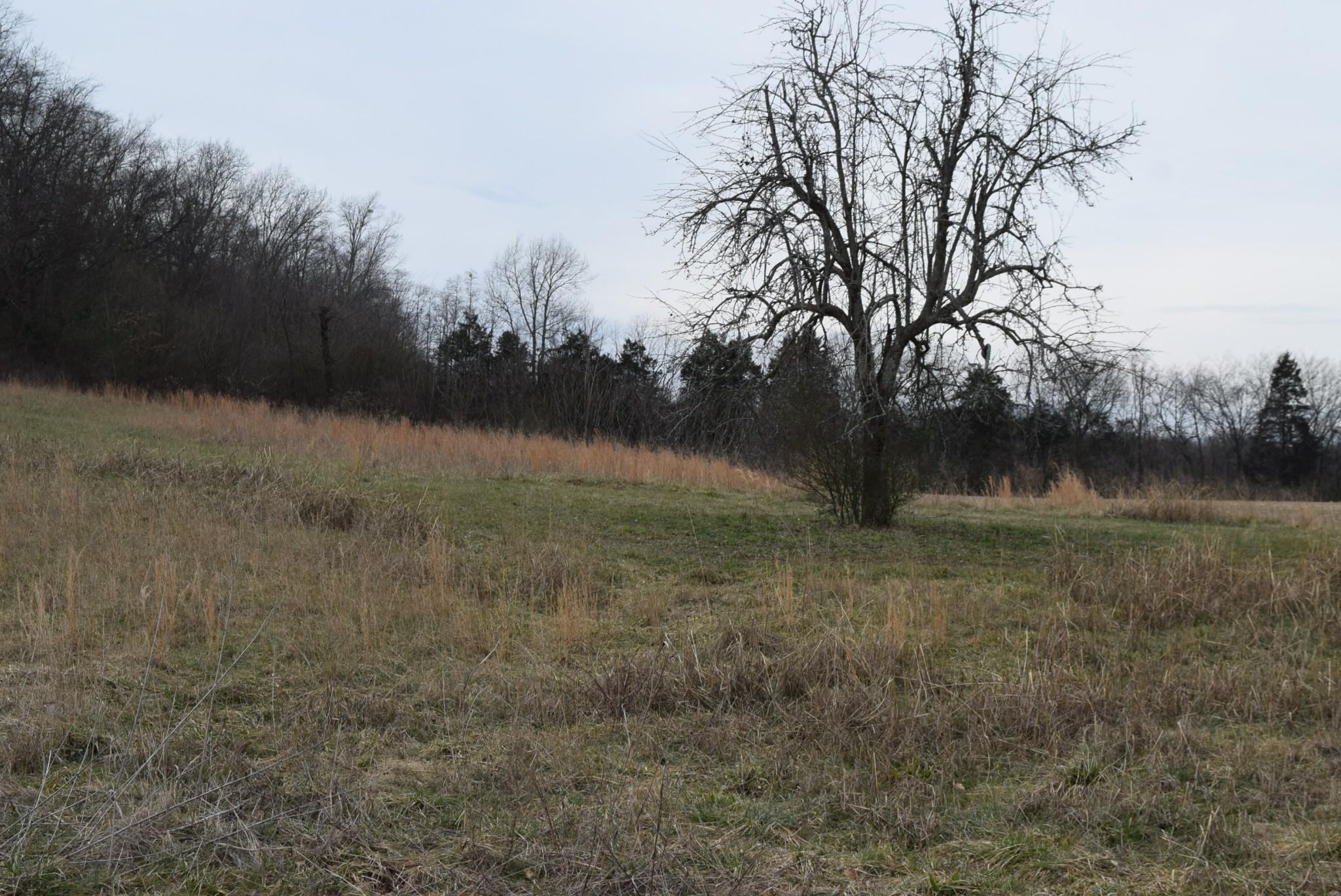 4911 Hillsboro Hwy Property Photo