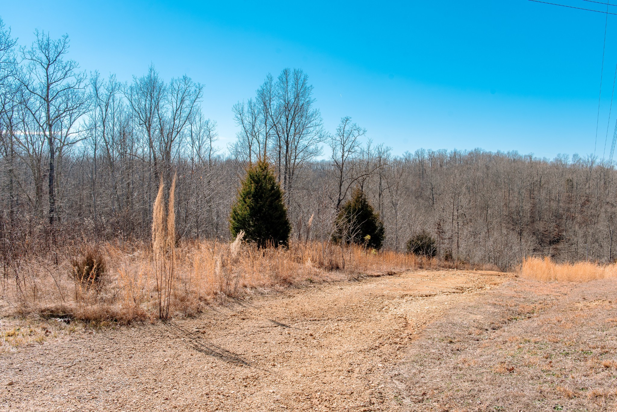 10307 Franklin Rd Property Photo - Nunnelly, TN real estate listing