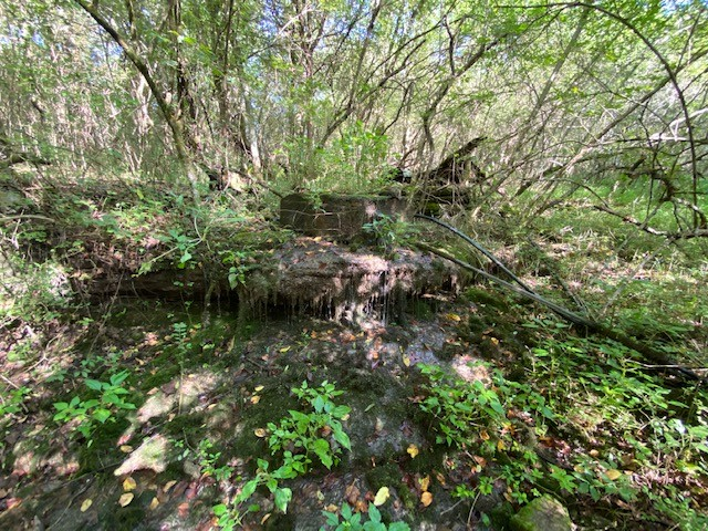 257 S Fishing Ford Rd Property Photo - Petersburg, TN real estate listing