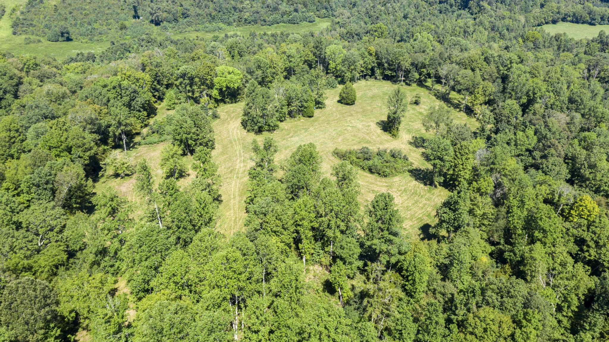0 Buck Branch Rd S Property Photo - Duck River, TN real estate listing