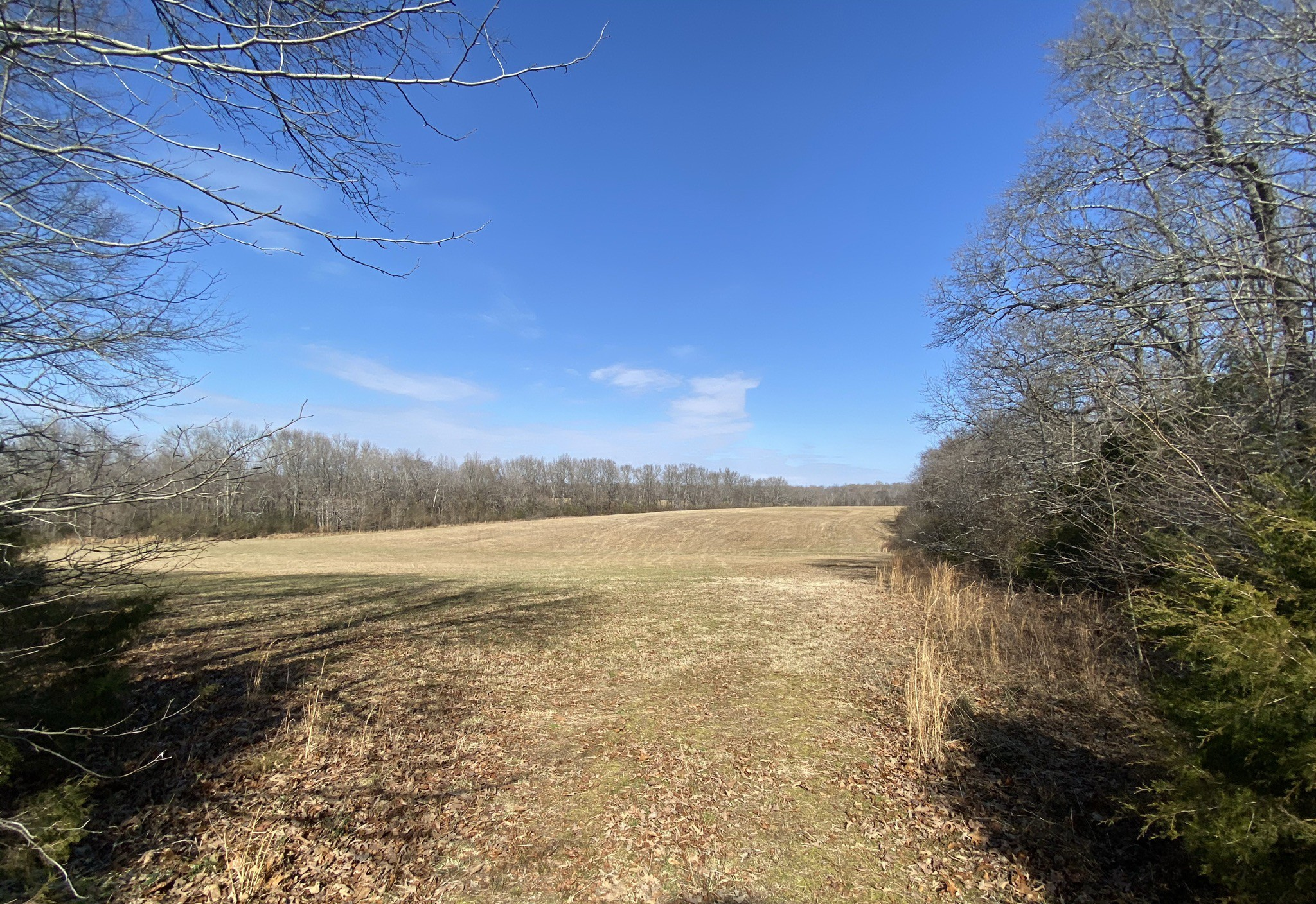 482 Vanntown Rd Property Photo - Elora, TN real estate listing