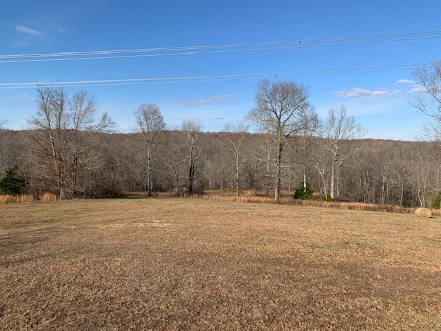 0 Elk Crk Rd Property Photo - Cumberland City, TN real estate listing