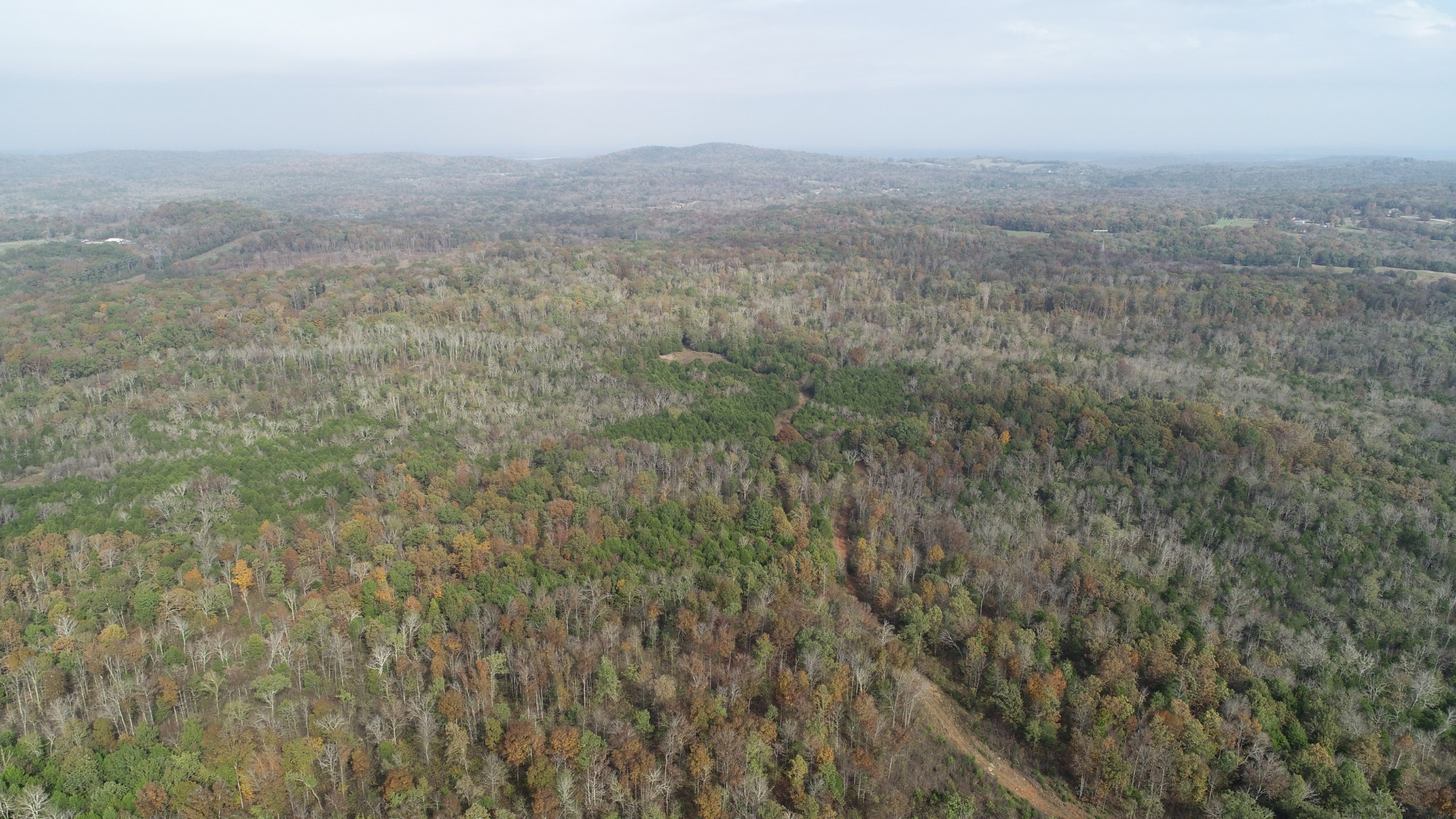 0 Hill Rd Property Photo - Rockvale, TN real estate listing