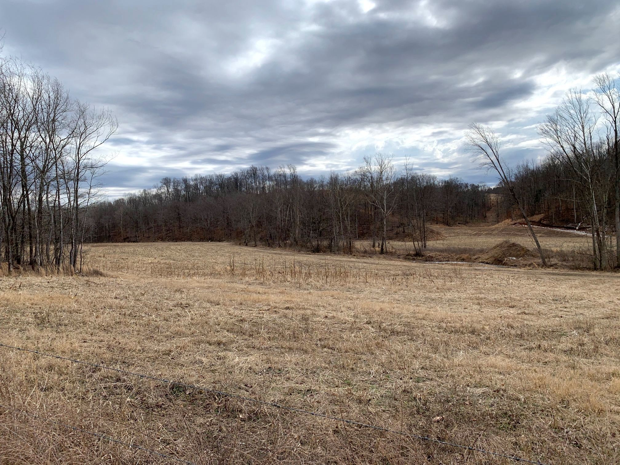 0 Moore Hollow Rd Property Photo - Indian Mound, TN real estate listing