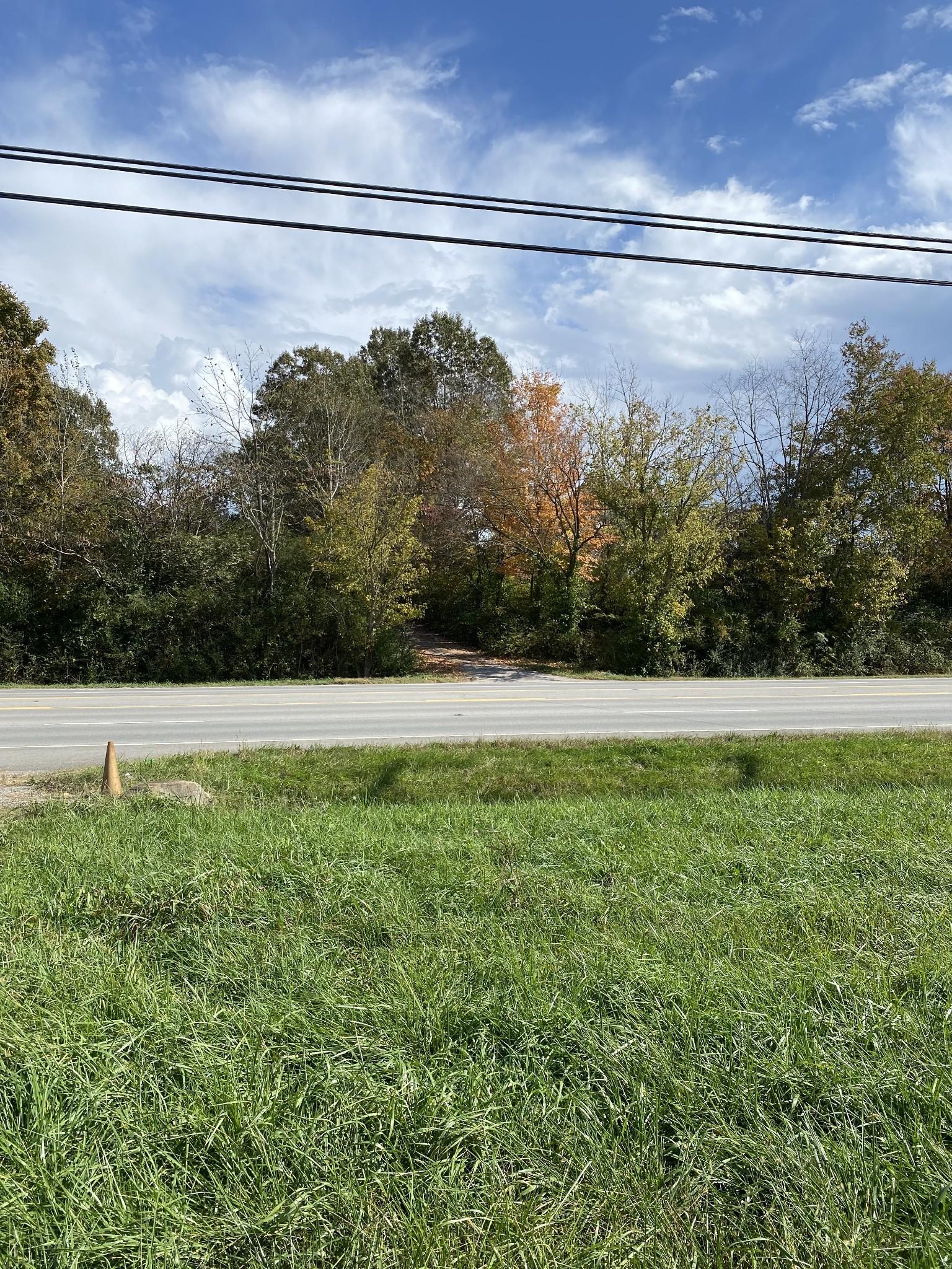 0 Highway 43 Property Photo - Leoma, TN real estate listing