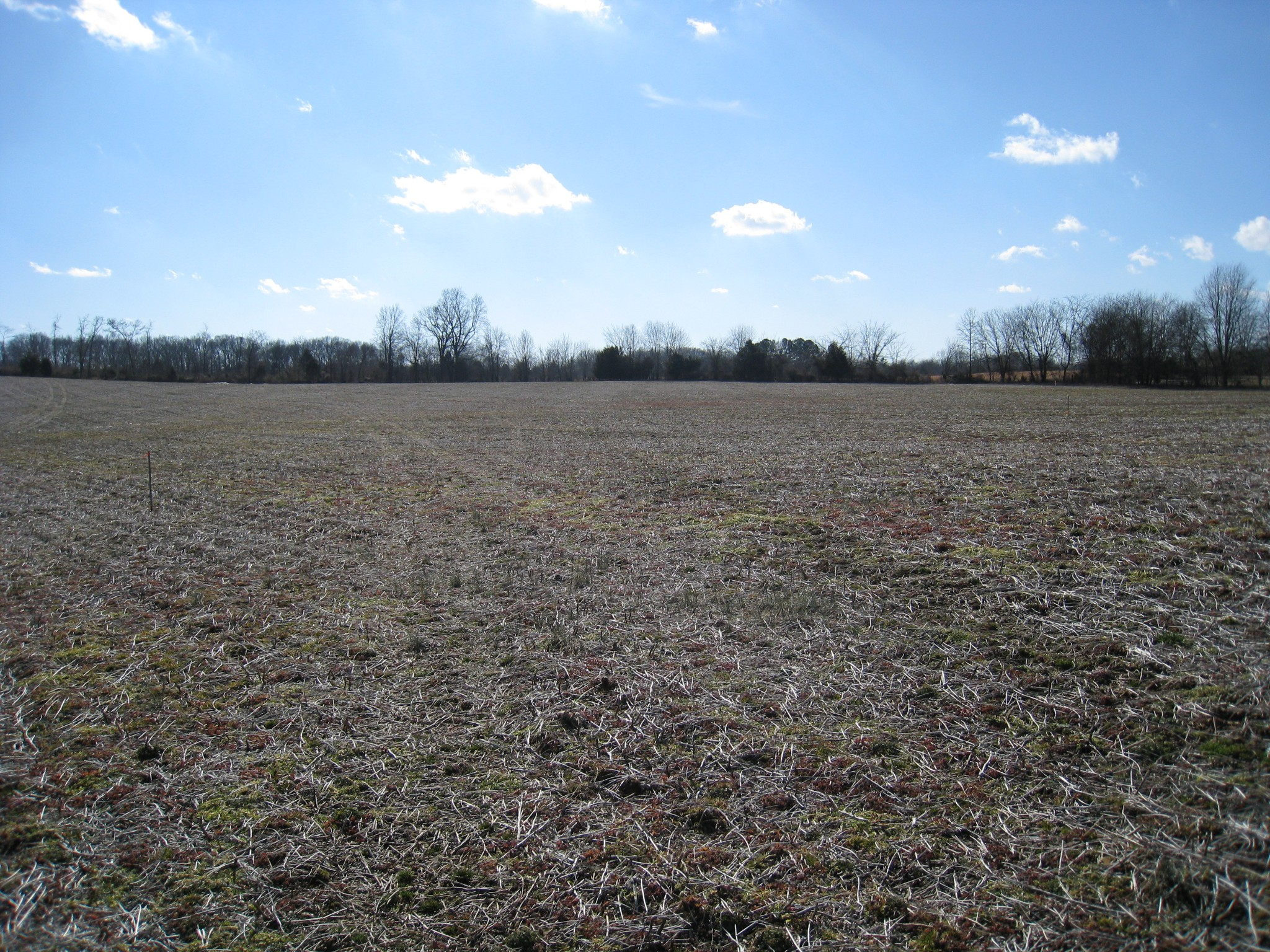 2 Clearview Rd Property Photo - Cottontown, TN real estate listing