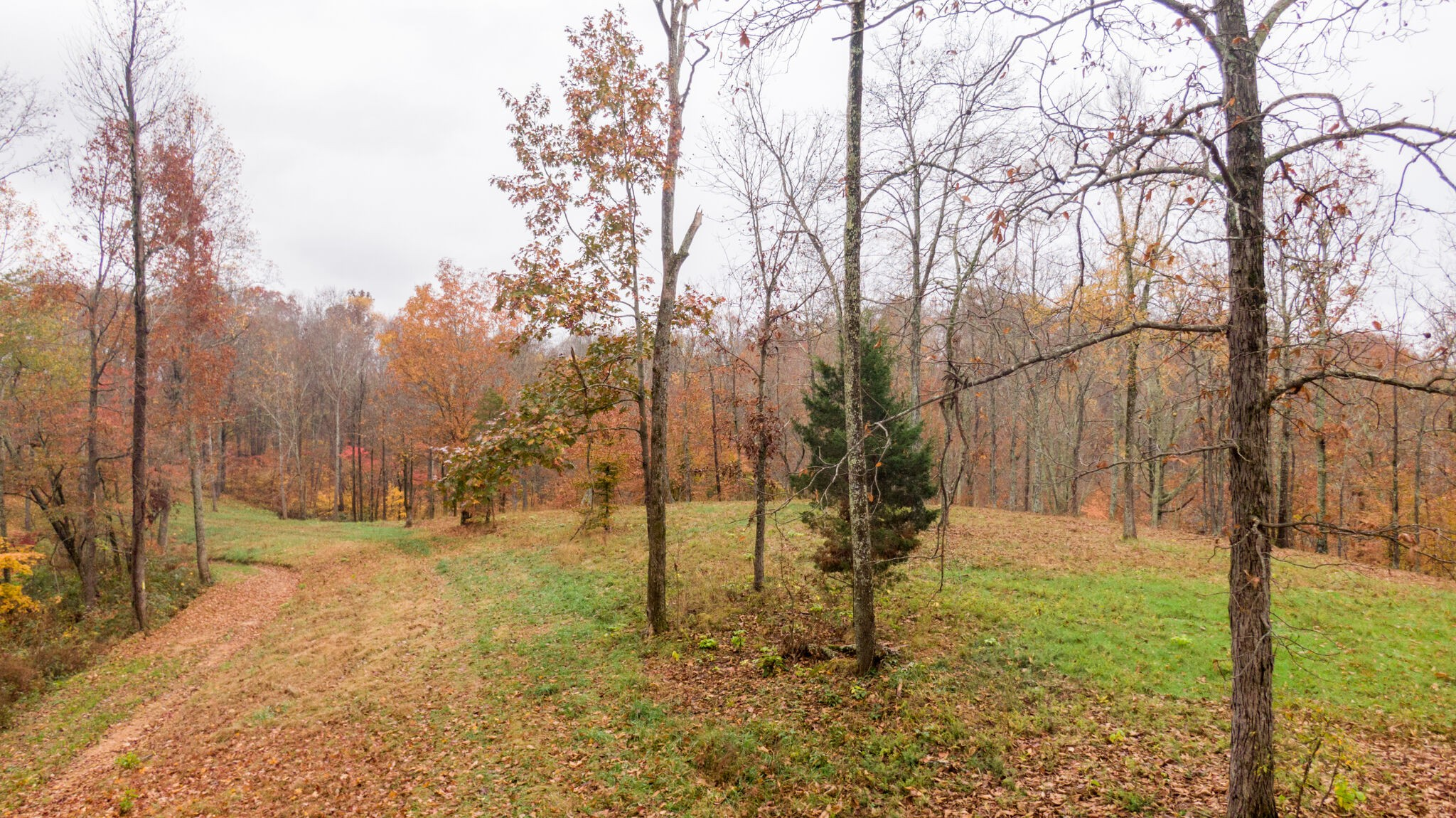 35 Acres Real Estate Listings Main Image