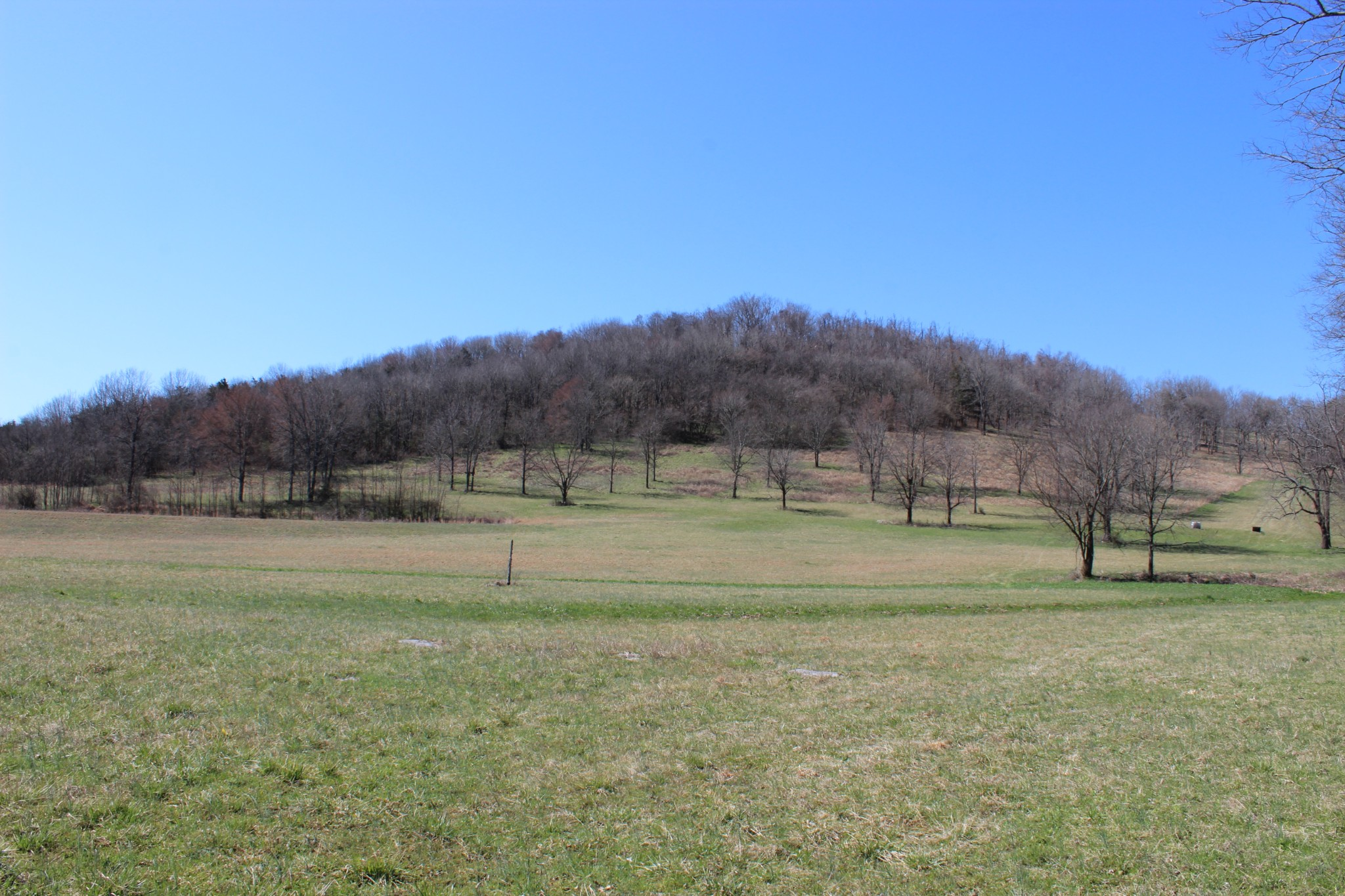 0 Boonshill Petersburg Rd Property Photo - Petersburg, TN real estate listing