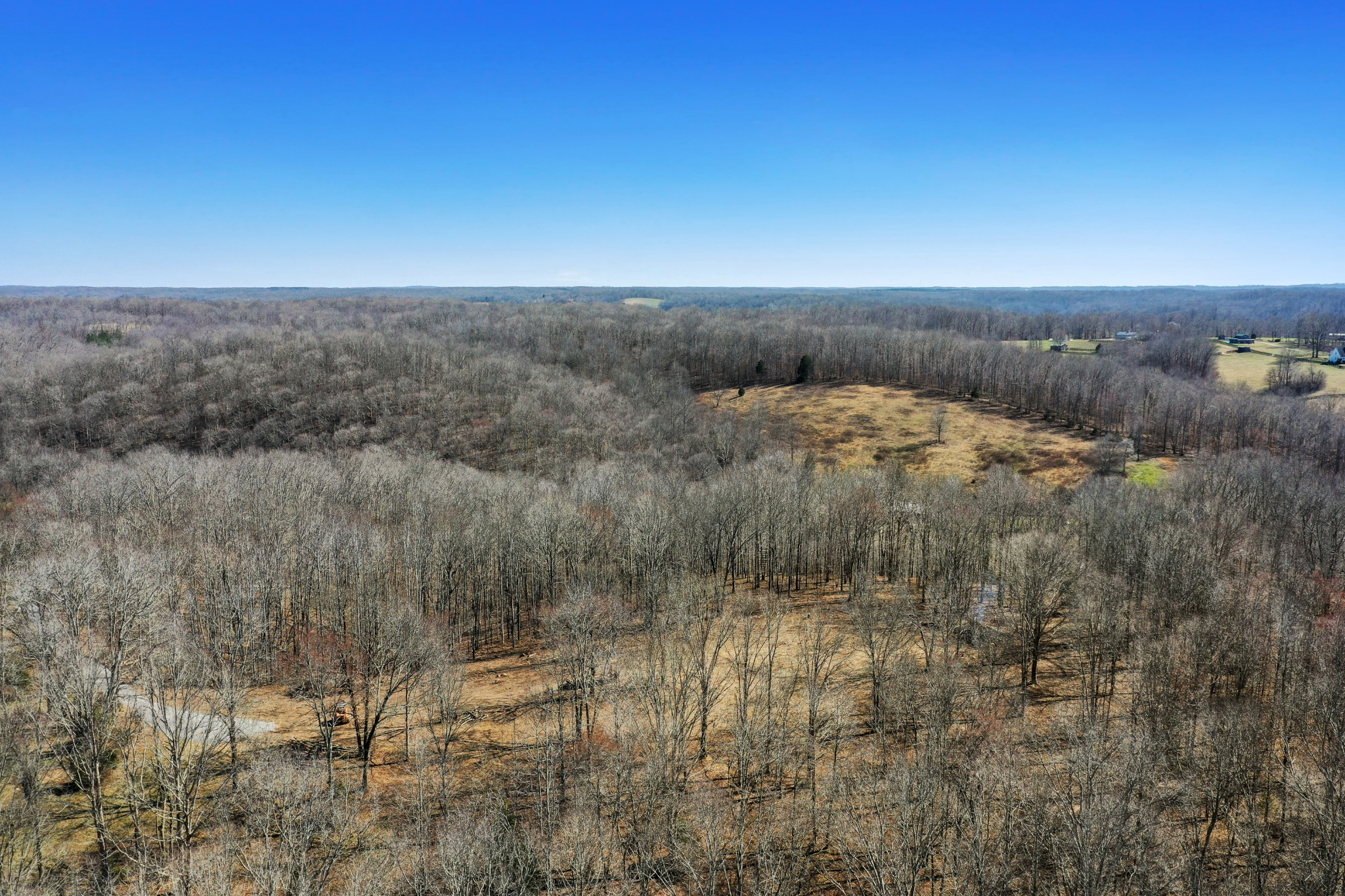 0 Shoals Br Rd Property Photo - Primm Springs, TN real estate listing