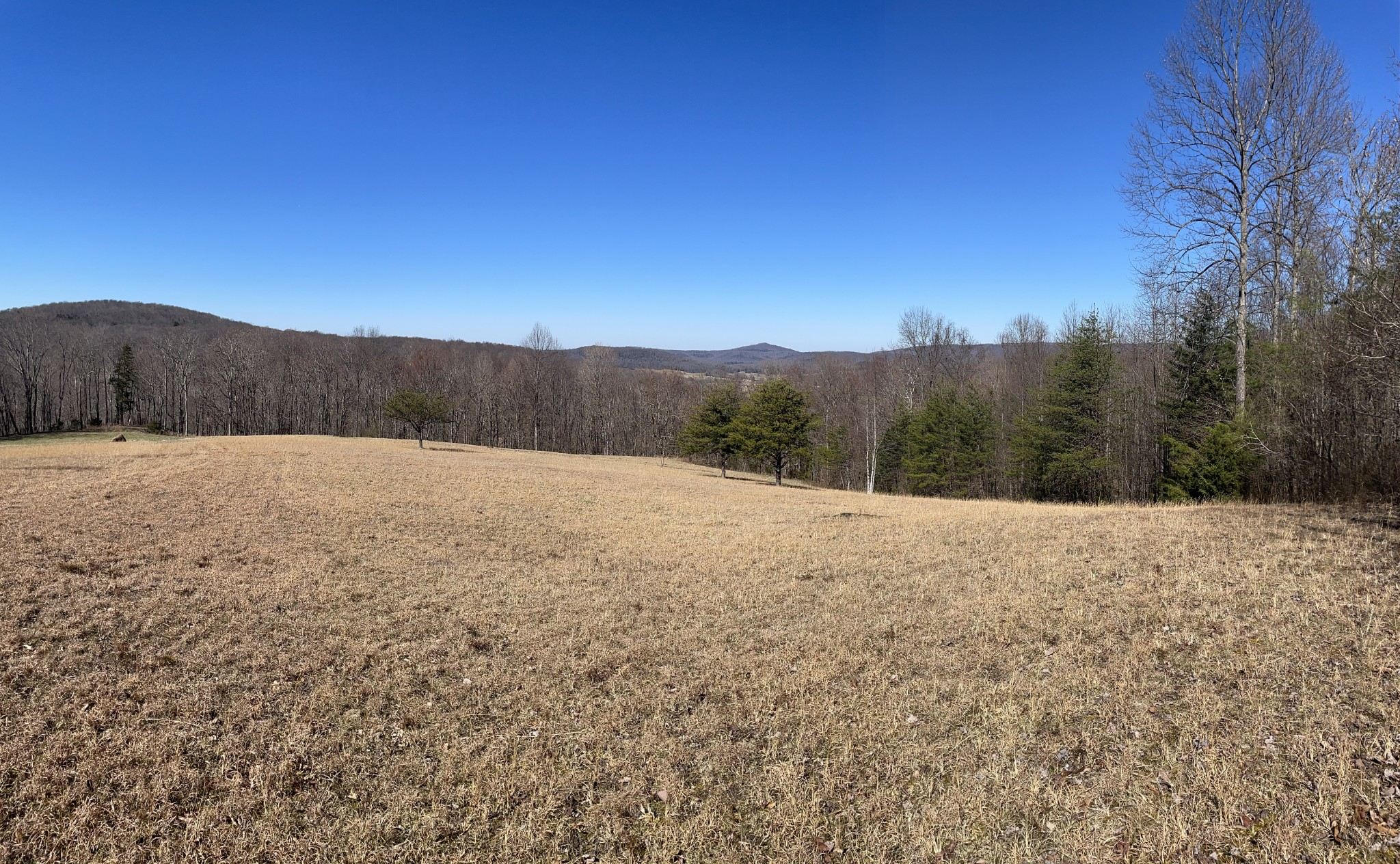 0 Yellow Flats Rd Property Photo - Spencer, TN real estate listing